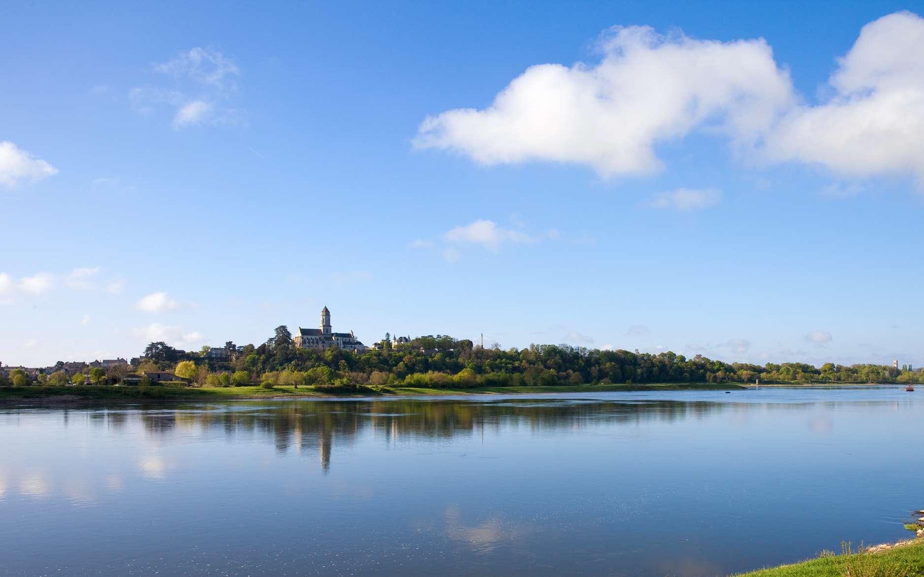 Dans la chaleur de l'été et avec un courant faible, les algues prolifèrent sur la Loire, dont des cyanobactéries toxiques. Des chiens sont morts d'avoir bu son eau. © Thierry Ryo, Fotolia