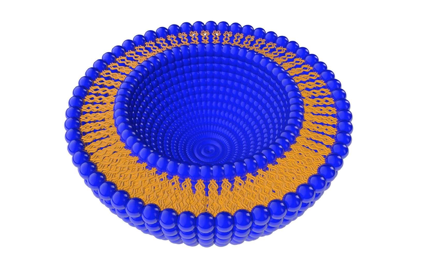 Le liposome est une vésicule sphérique fermée par une ou plusieurs bicouches de lipides. © clusterx, Fotolia