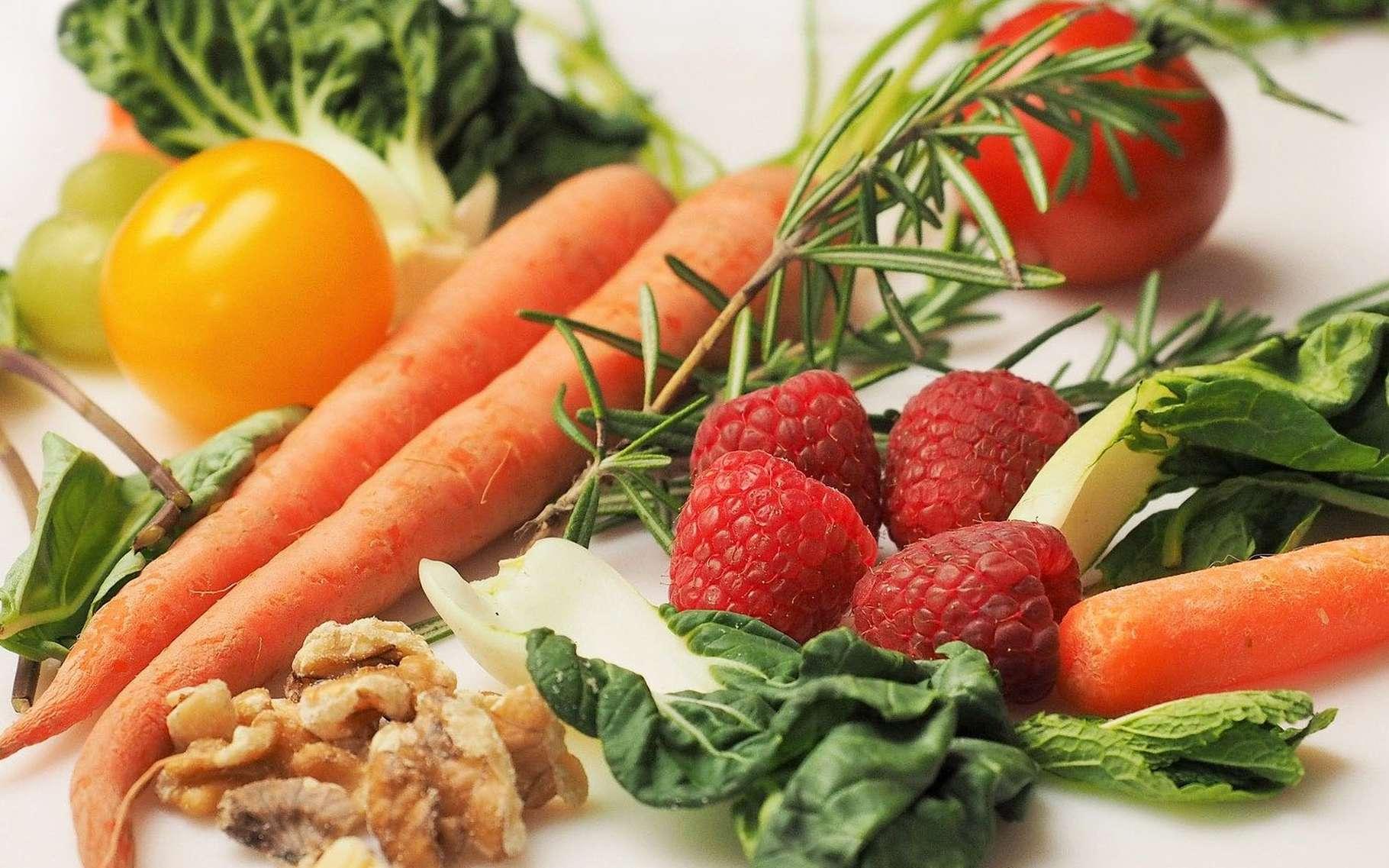 Quelle place pour la dynamique végétarienne en Europe ? © Dbreen,Pixabay, DP