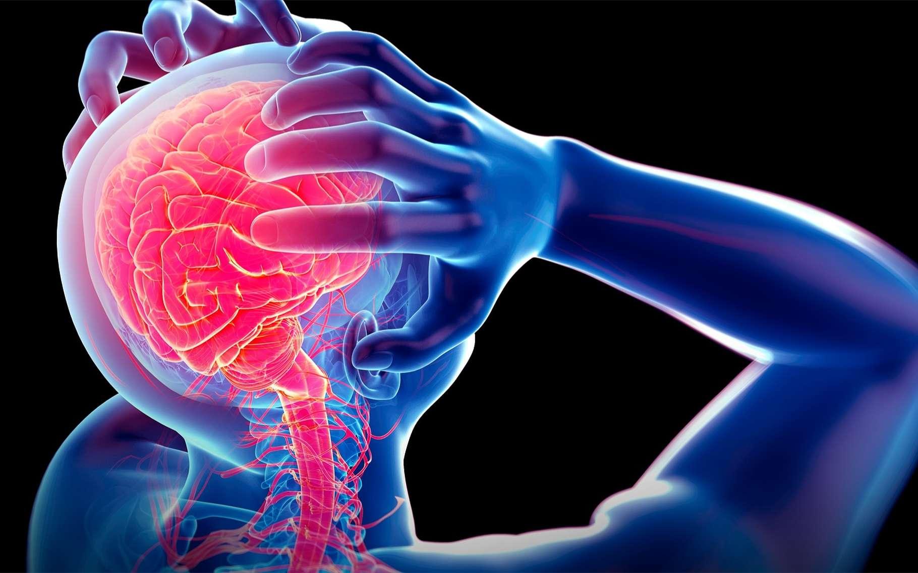 La dépression semble associée à un état inflammatoire du cerveau. © Sebastian Kaulitzki, Shutterstock