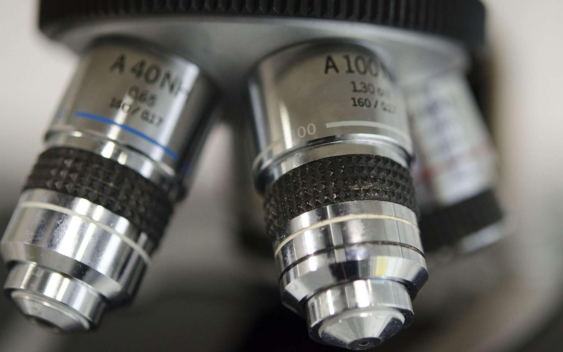 Grâce aux métamatériaux, les chercheurs peuvent concevoir des superlentilles, capables de distinguer des détails largement inférieurs à la longueur d'onde de base de l'instrument utilisé. © University of Liverpool Faculty of Health & Life Sciences, Flickr, CC by 2.0