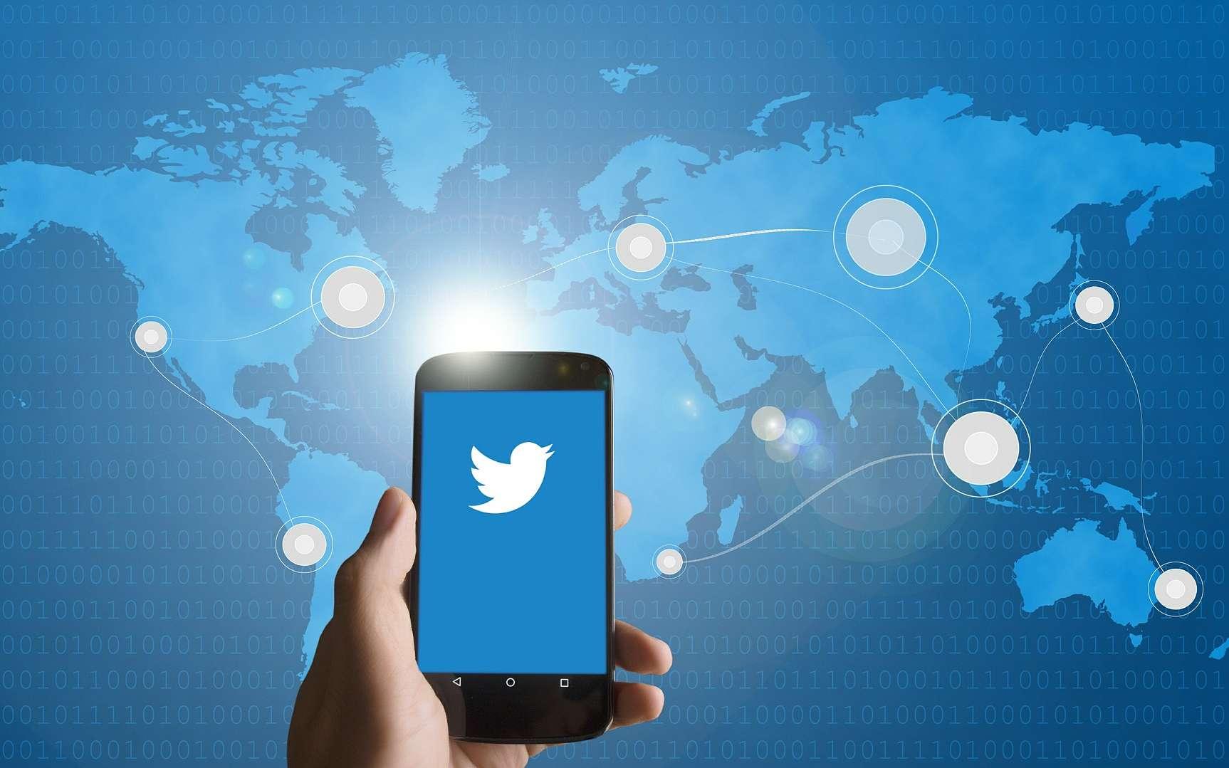 En anglais, le verbe to tweet signifie « gazouiller » mais aussi « jacasser », et le nom twitter signifie « gazouillis » ou « pépiement », et a pour synonyme tweet. © edar, Pixabay, DP