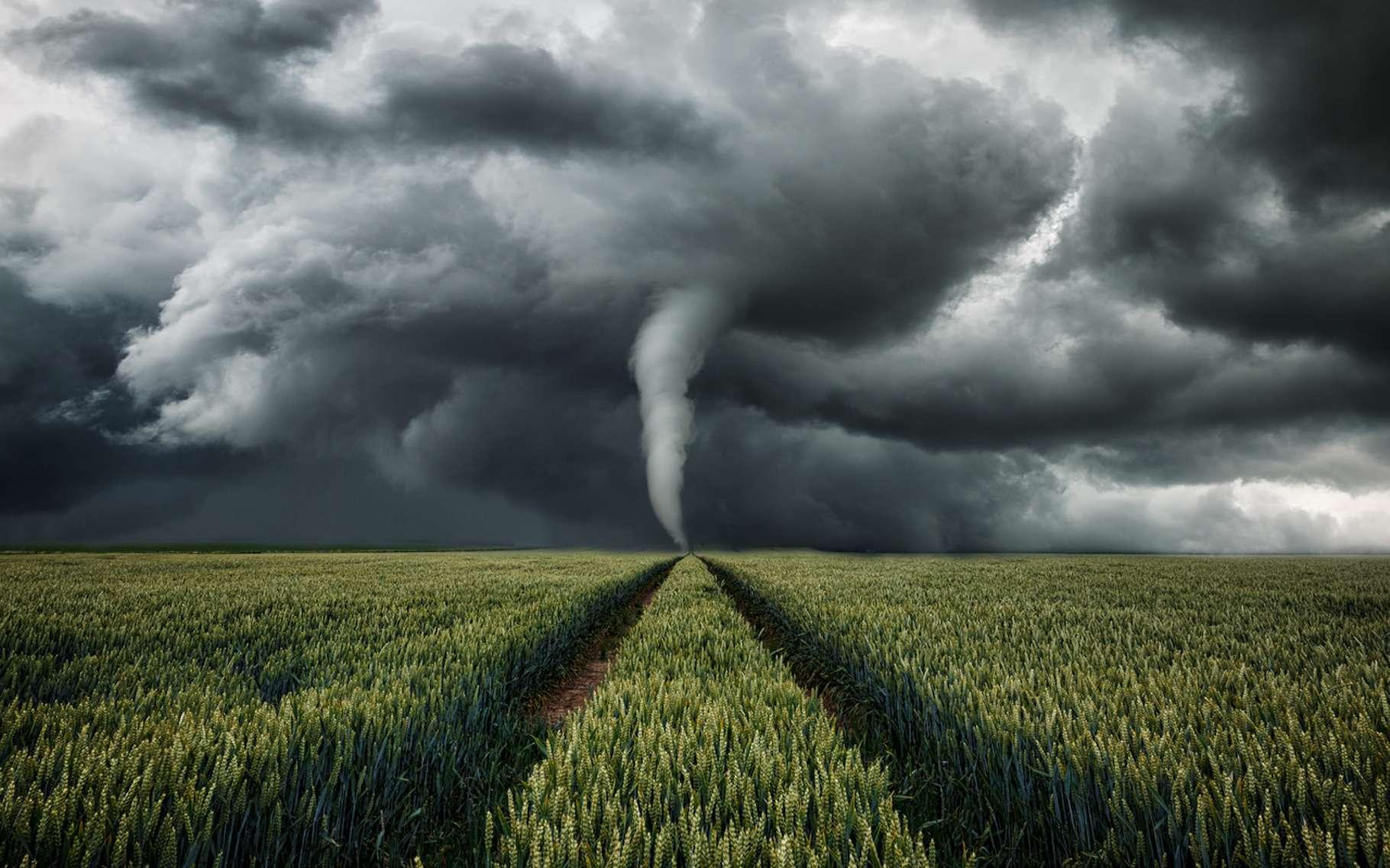 De nouvelles observations viennent mettre à mal la théorie de la formation des tornades. Celles-ci se formeraient au sol. © ohenze, Fotolia