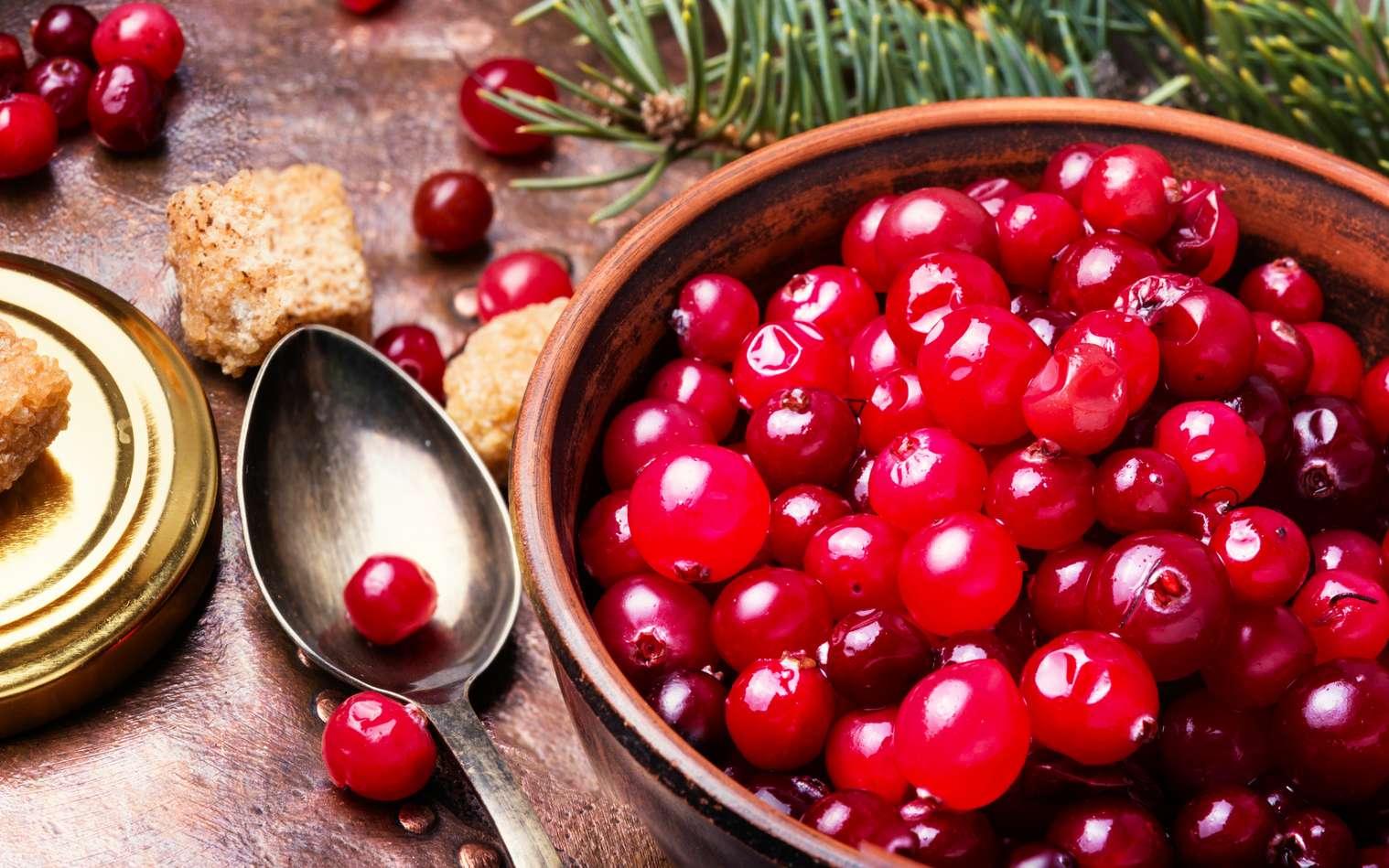 Pour l'Agence nationale de sécurité sanitaire (Anses), « les produits à base de cranberry diminuent l'adhésion sur les parois des voies urinaires de certaines bactéries ». © nikolaydonetsk, fotolia