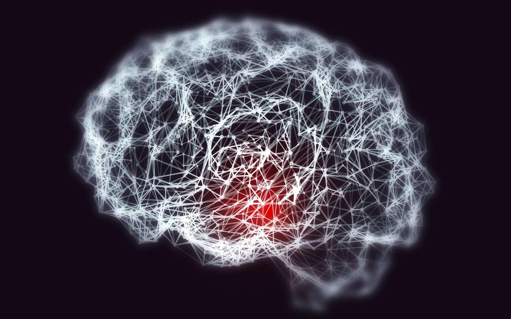 La maladie neurodégénérative d'Alzheimer n'a pas encore livré tous ses secrets. Des scientifiques de l'université de Mc Gill soulignent la part génétique de la maladie en étudiant le gène APOE ꜫ4. © Kateryna_Kon, Fotolia