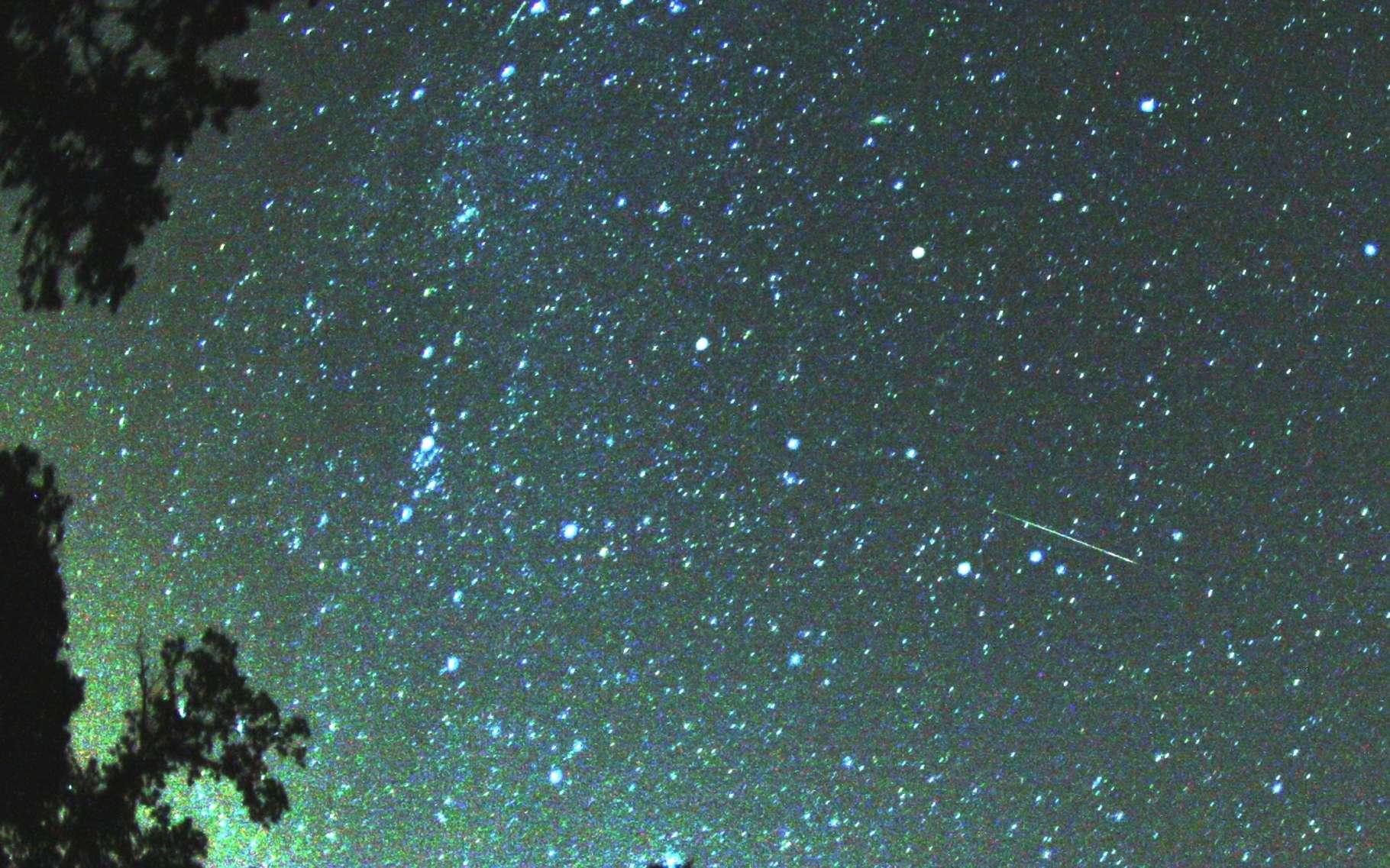 Du 11 au 13 août, entre minuit et trois heures du matin, du côté de la constellation de Persée, vers le nord, une affluence de météores devrait décorer notre ciel. © Brocken Inaglory, CC BY-SA 3.0
