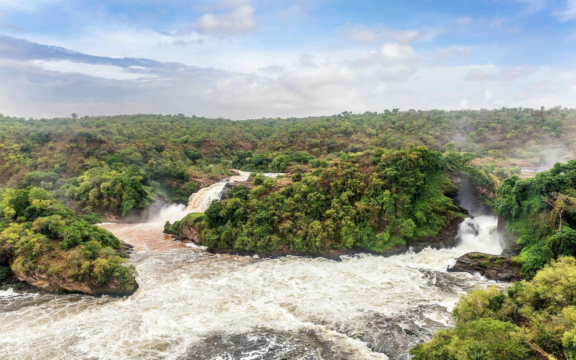 Partez à la recherche des sources du Nil avec Chasseurs de science