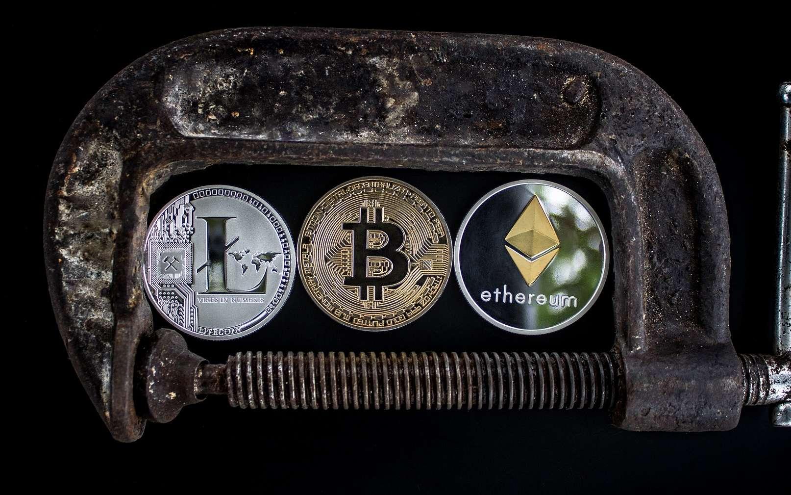 Litecoin, Bitcoin et Ethereum sont des monnaies reposant sur leur propre blockchain et donc des coins. © WorldSpectrum, Pixabay
