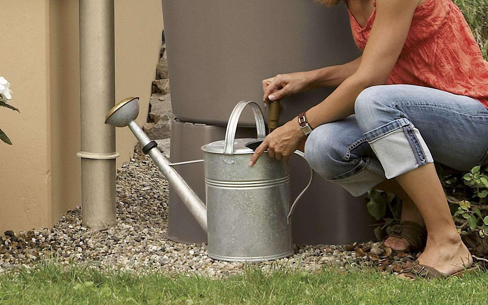 Il est utile de récupérer l'eau de pluie, une ressource gratuite. © Garantia