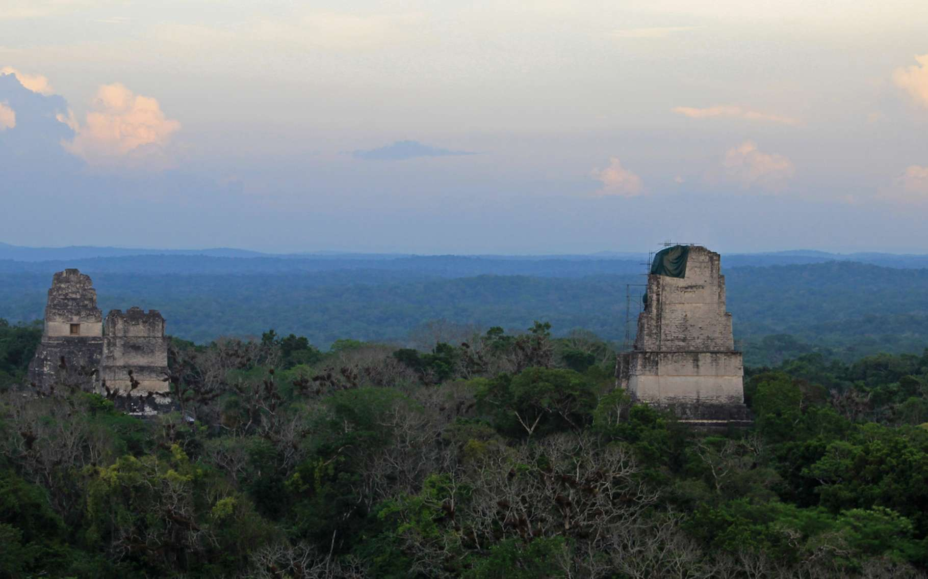 C'est dans la jungle du Guatemala, à Tikal, ici en photo, que des chercheurs viennent de découvrir une nouvelle cité maya géante. © reisegraf.ch, Fotolia