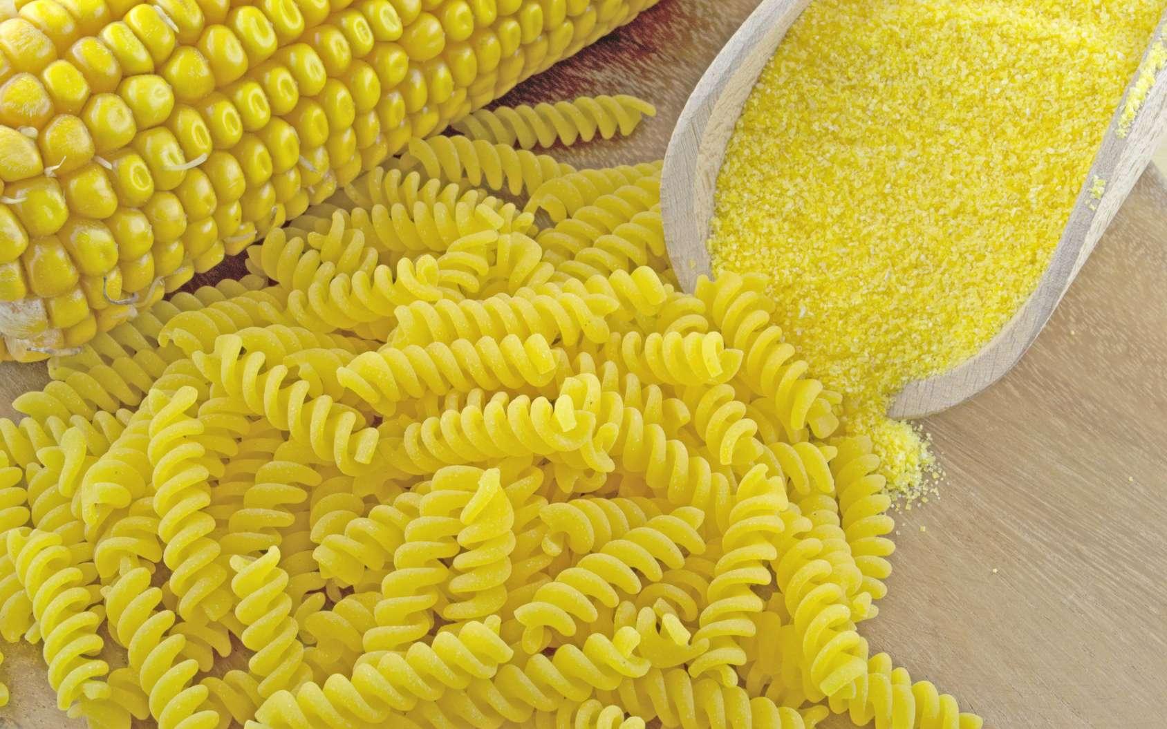 Les produits sans gluten s'avèrent bien moins sains pour la santé que leurs homologues classiques. © fusolino/Fotolia