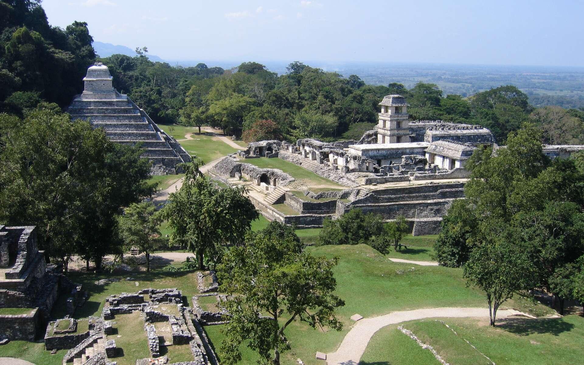 Palenque, dans l'État mexicain du Chiapas, près du fleuve Usumacinta, est mondialement célèbre. C'est l'un des sites mayas les plus impressionnants et on en connaît aujourd'hui probablement moins de 10 % de sa superficie. Il reste encore plus de mille structures couvertes par la forêt. © Wikipédia, Peter Andersen