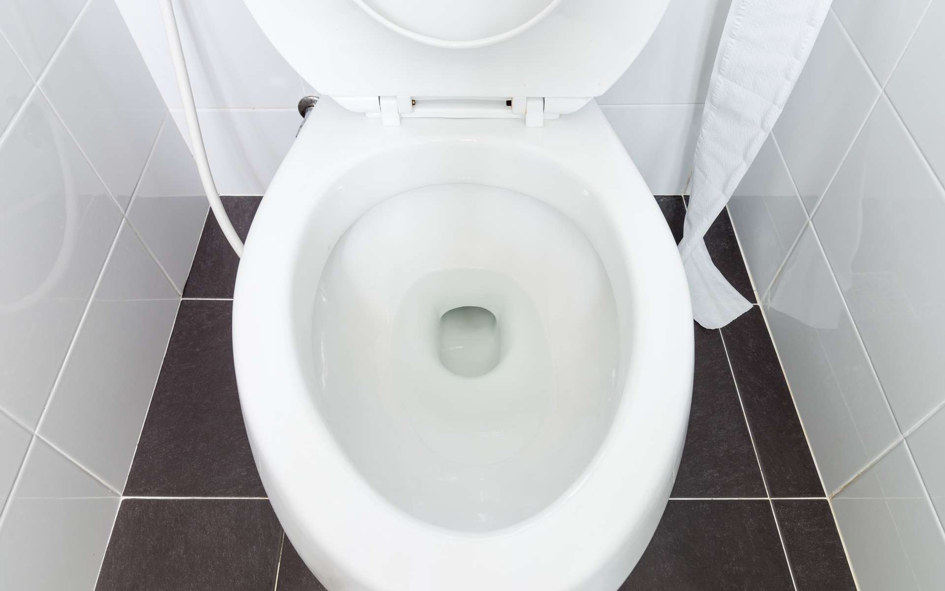 L'eau des toilettes, révélatrice du statut social. © trainman111, Adobe Stock