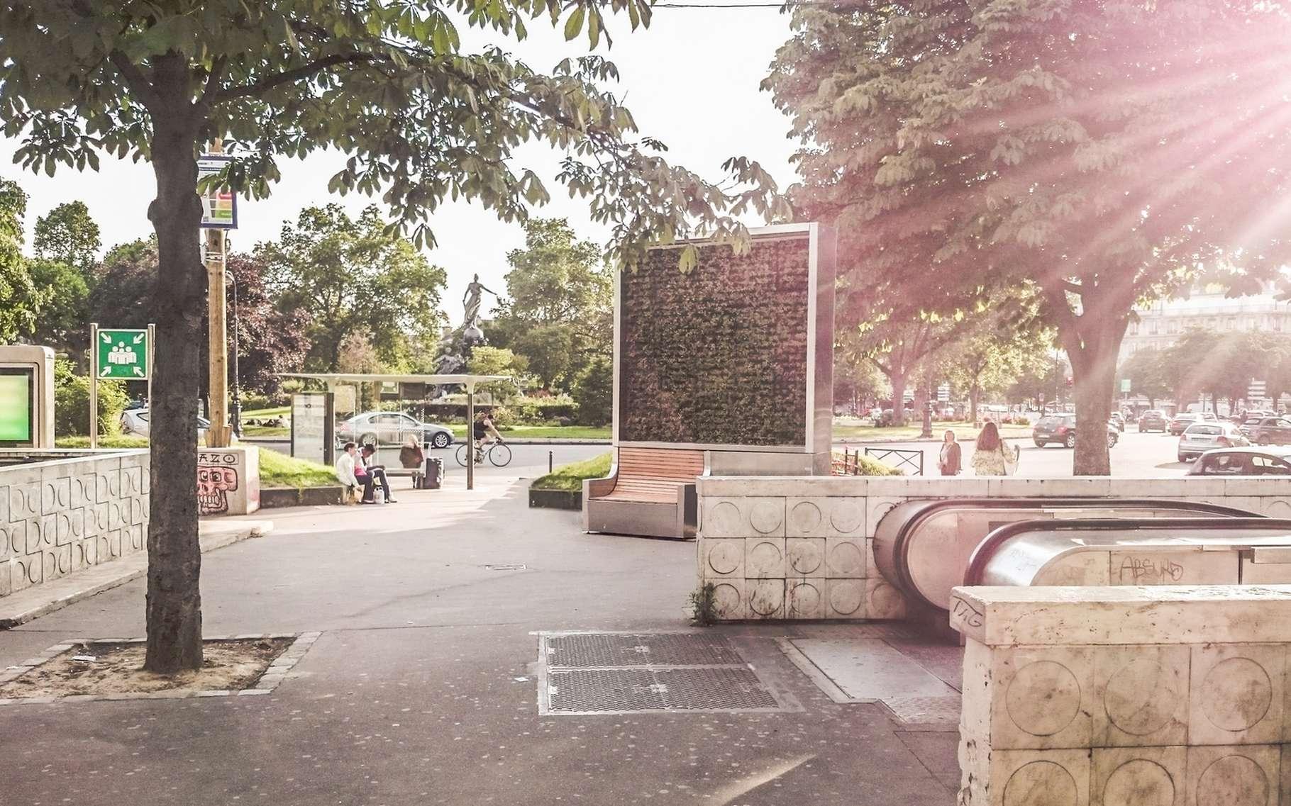 À la sortie du métro place de la Nation, on peut découvrir l'un des trois City Tree installés par la mairie de Paris. Ces murs végétalisés à base de mousse naturelle filtrent les gaz à effet de serre dans un rayon de 50 mètres et refroidissent l'air. © Green City Solutions