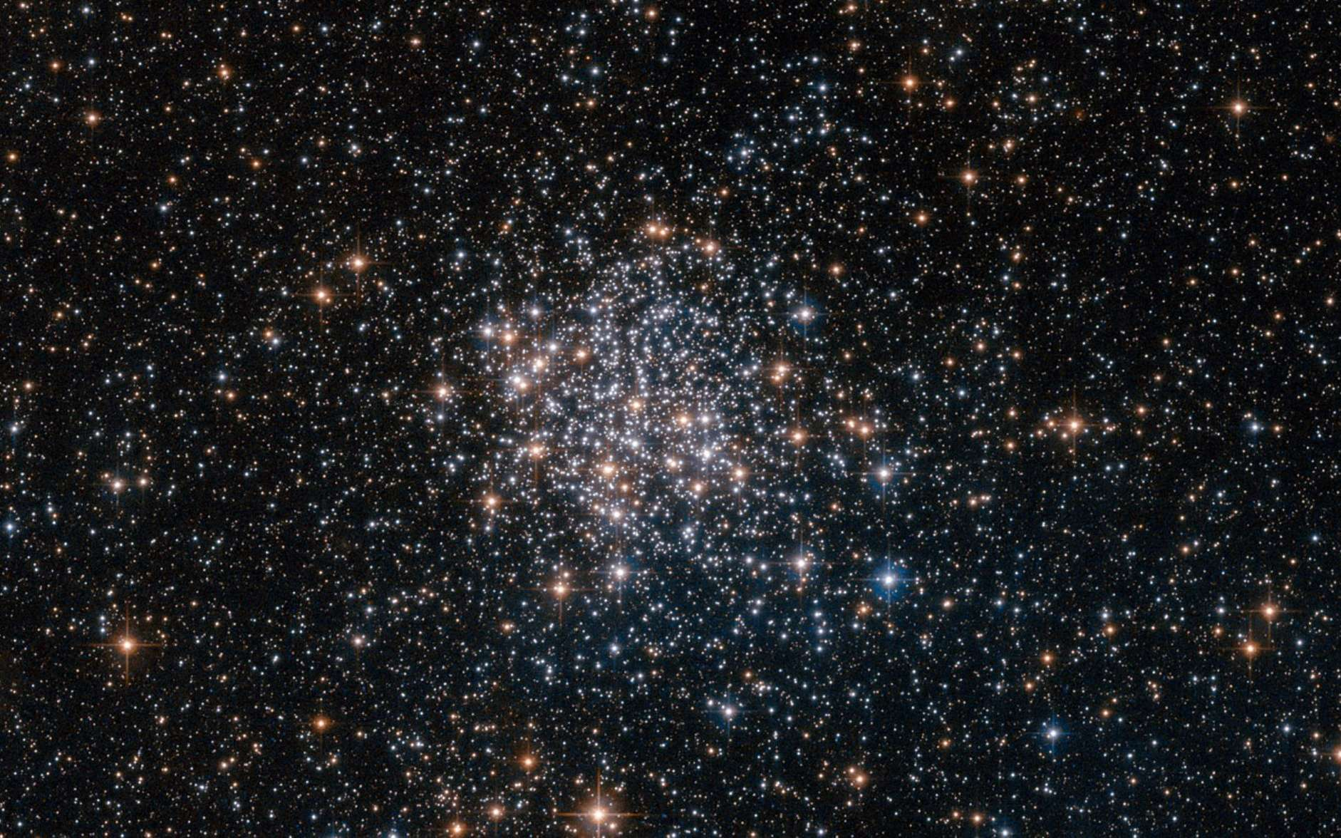 Dans l'amas ouvert NGC 1854, vu par Hubble, les étoiles sont de masses différentes mais cependant presque toutes nées en même temps, par effondrement gravitationnell et fragmentation d'un nuage moléculaire. Les étoiles visibles sont donc jeunes et, dans un milliard d'années tout au plus, elles seront dispersées. Pour un Terrien, NGC 1854 est observable depuis l'hémisphère sud. © Nasa, Esa