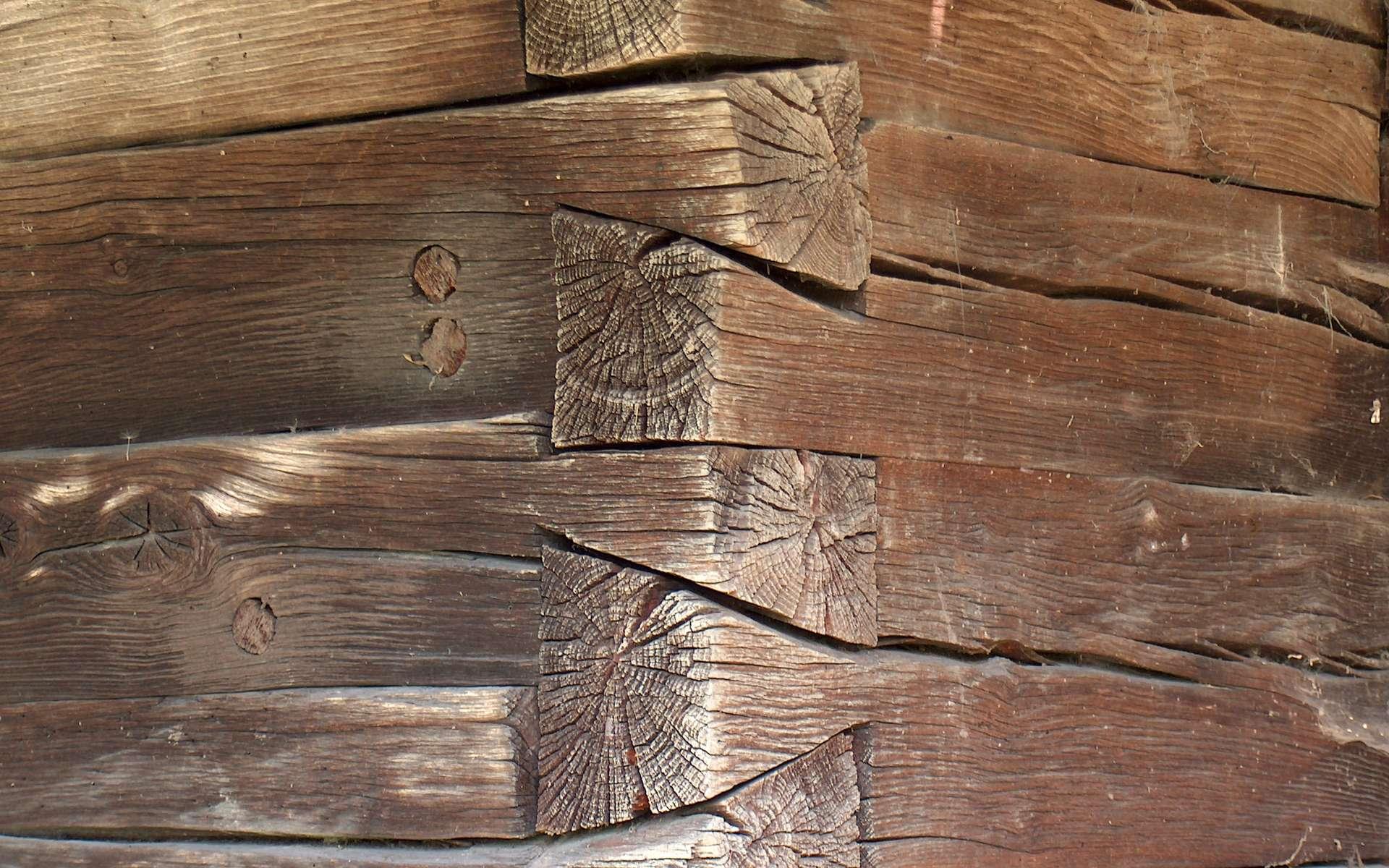 L'assemblage en queue d'aronde est composé de deux pièces de bois taillées en forme de queue d'hirondelle. Sur la photo, on peut observer les pièces de bois, en forme de trapèze rappelant la queue d'une hirondelle. © Dumitru Rotari, CC BY 2.5, Wikimedia Commons