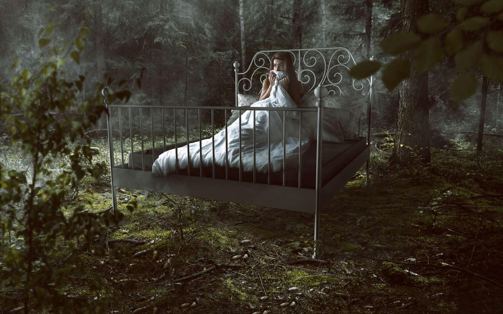 Pourquoi fait-on des cauchemars plutôt que des rêves ? © Lassedesignen, Fotolia