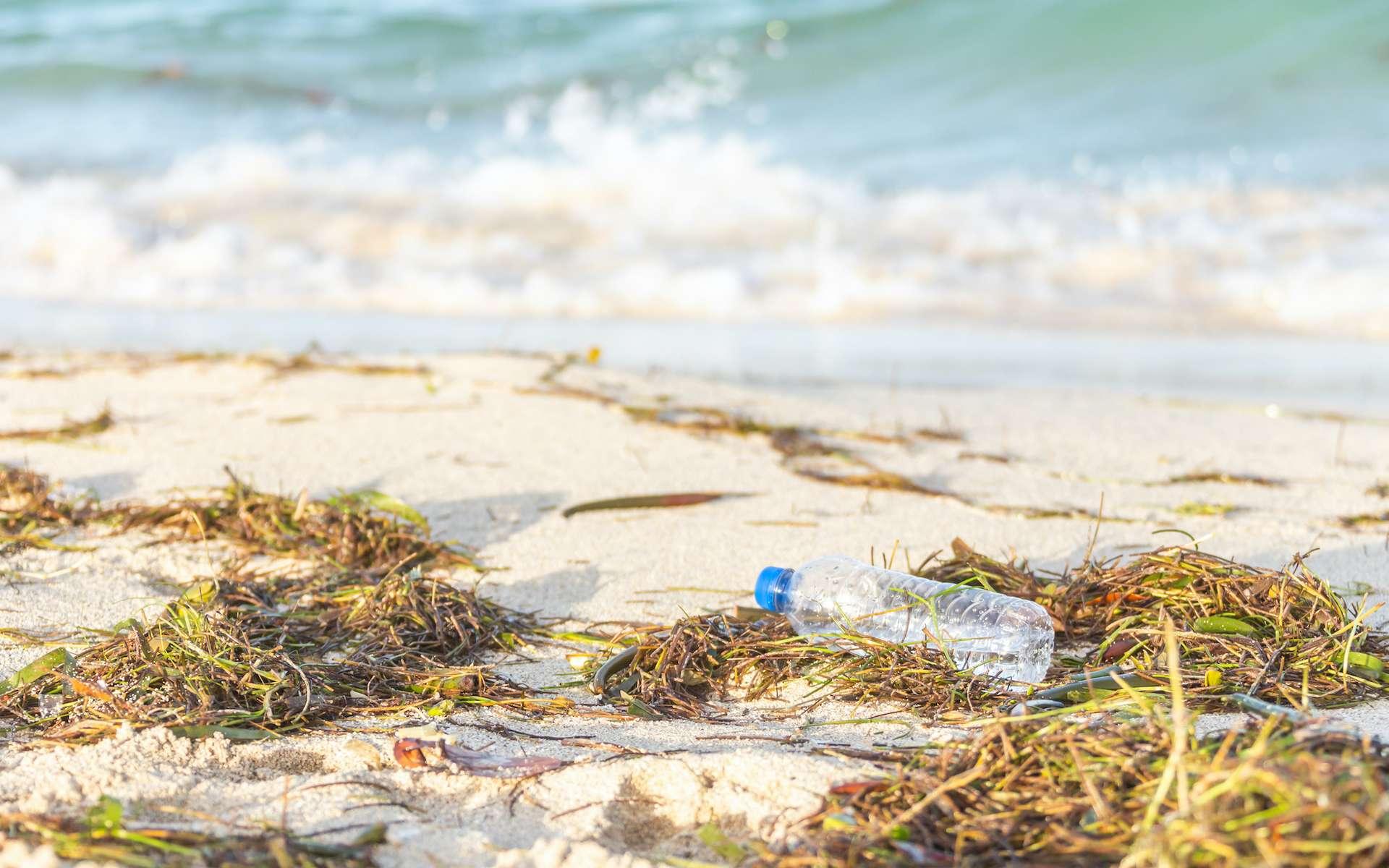 La majeure partie du plastique déversé en mer est rejeté sur le littoral. © Mariakray, Adobe Stock