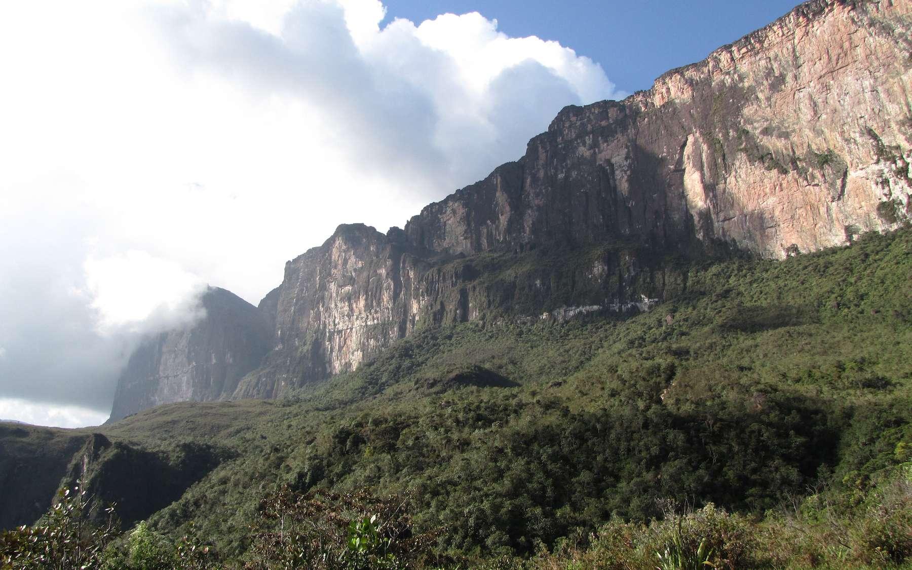 Le tepuy Roraima au Vénézuela. © Tadashi Okoshi, Flcikr