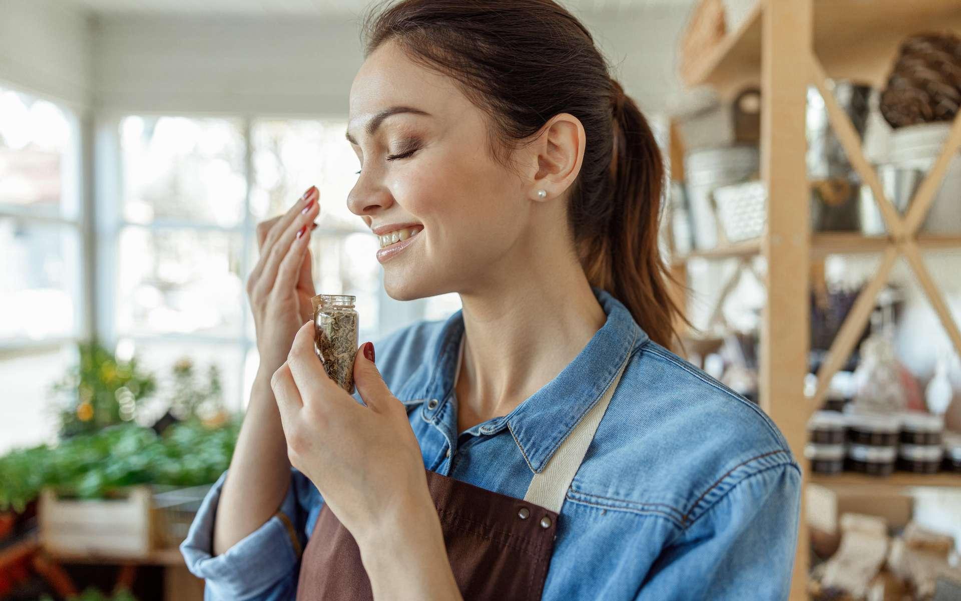 L'odorat est l'un des cinq sens humains. © Yakobchuk Olena, Adobe Stock