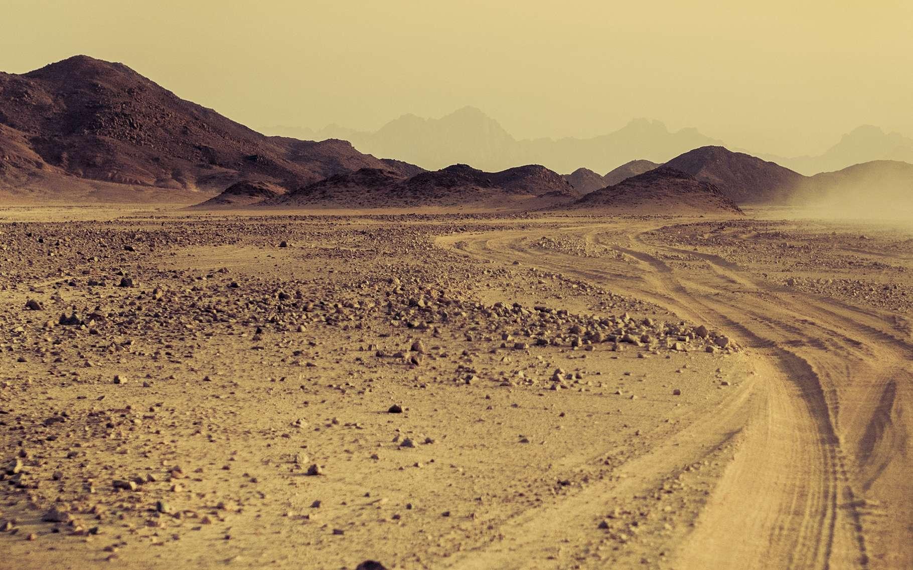 Qu'est-ce qu'un désert ? © Repina Valeriya, Shutterstock