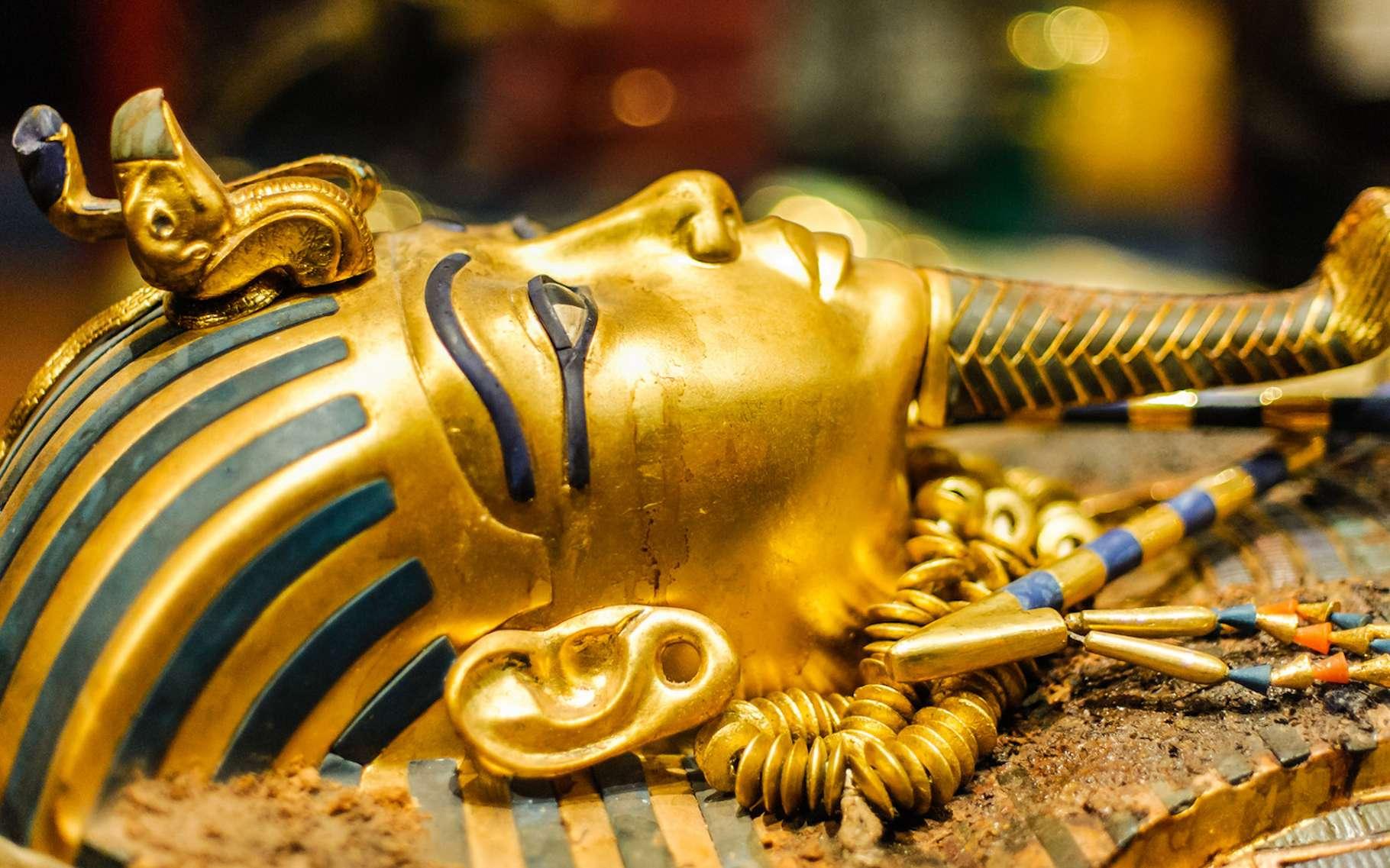 Alors que l'exposition « Toutankhamon, le Trésor du Pharaon » ouvre ses portes à Paris, la légende du plus célèbre des pharaons continue de fasciner. © Dieter Hawlan, Fotolia