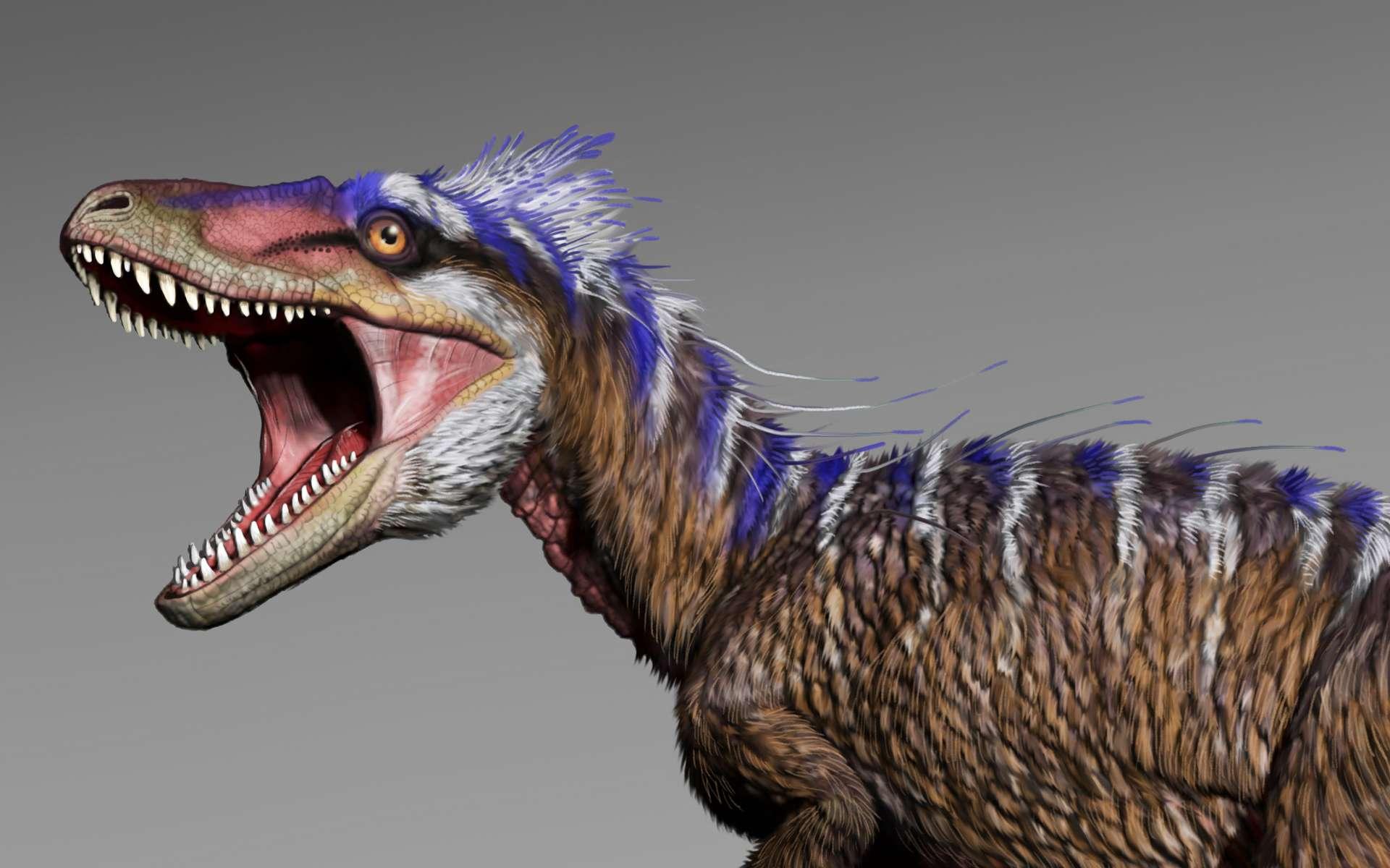 Moros intrepidus, le petit cousin du Tyrannosaurus rex, était beaucoup plus véloce que son aîné. © Jorge Gonzalez