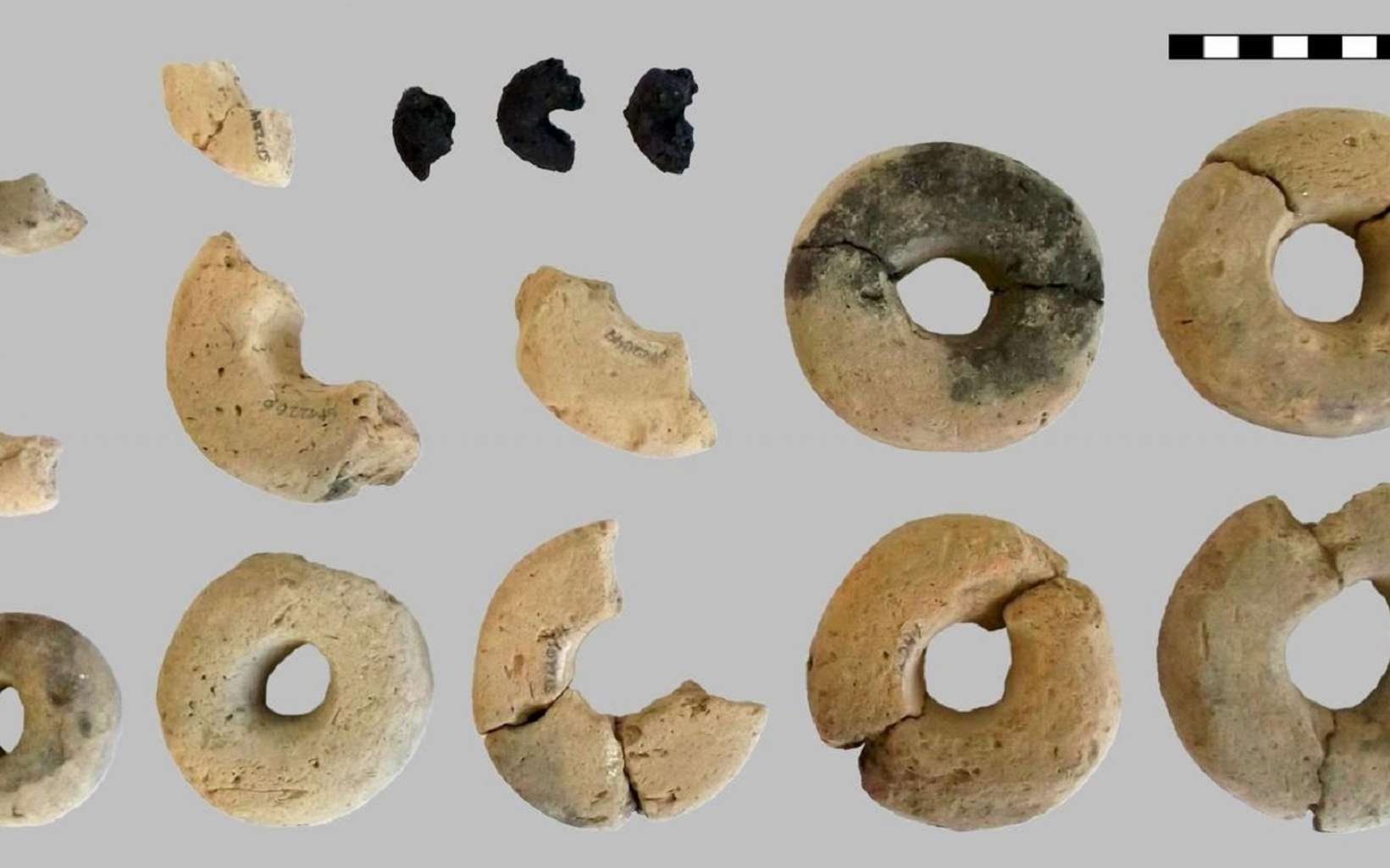 Les anneaux trouvés sur le site archéologique. © Heiss et al, 2019, Plos One