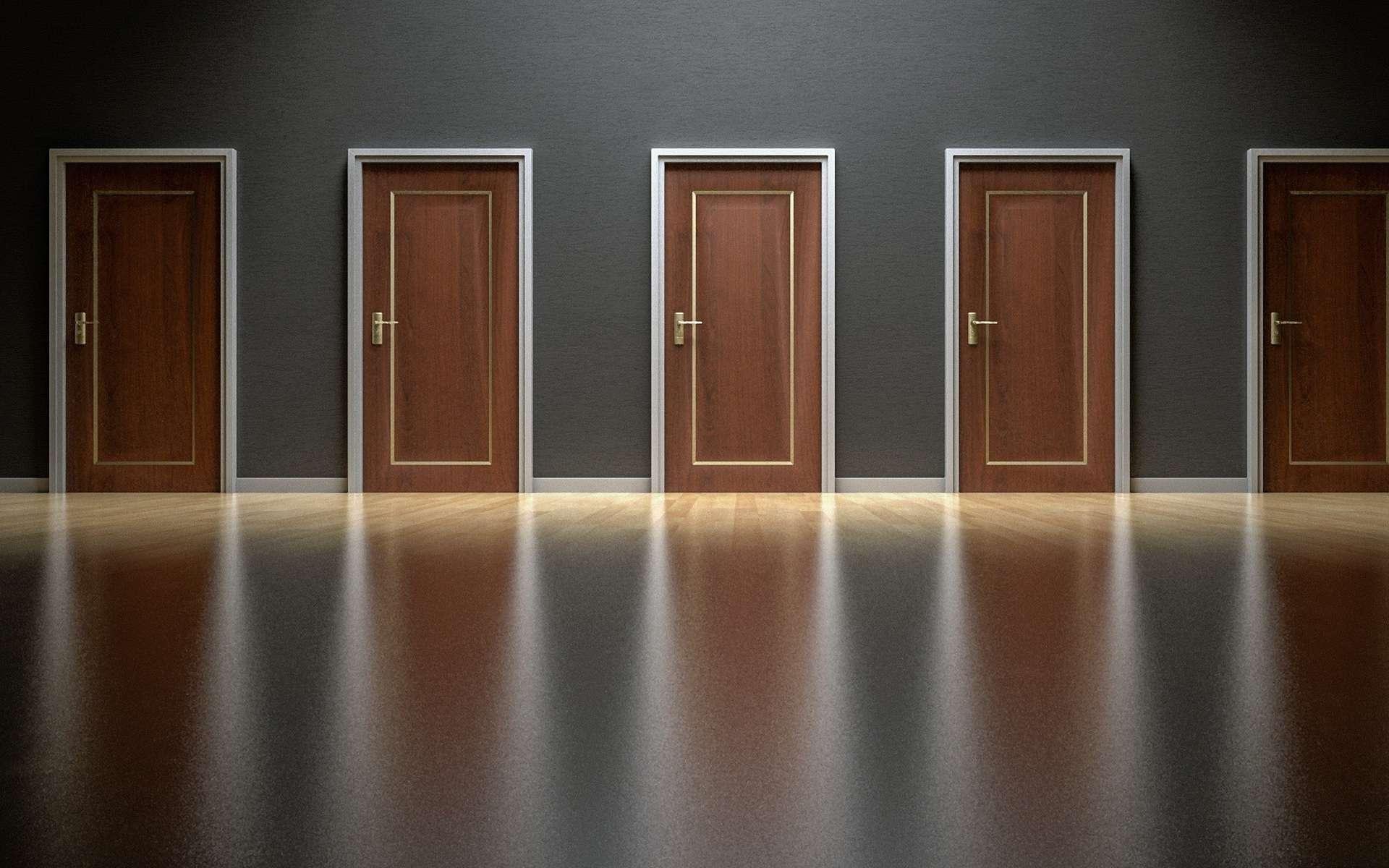 Closed Brown Wooden Doors Inside Poor Lighted Room. © Pixabay