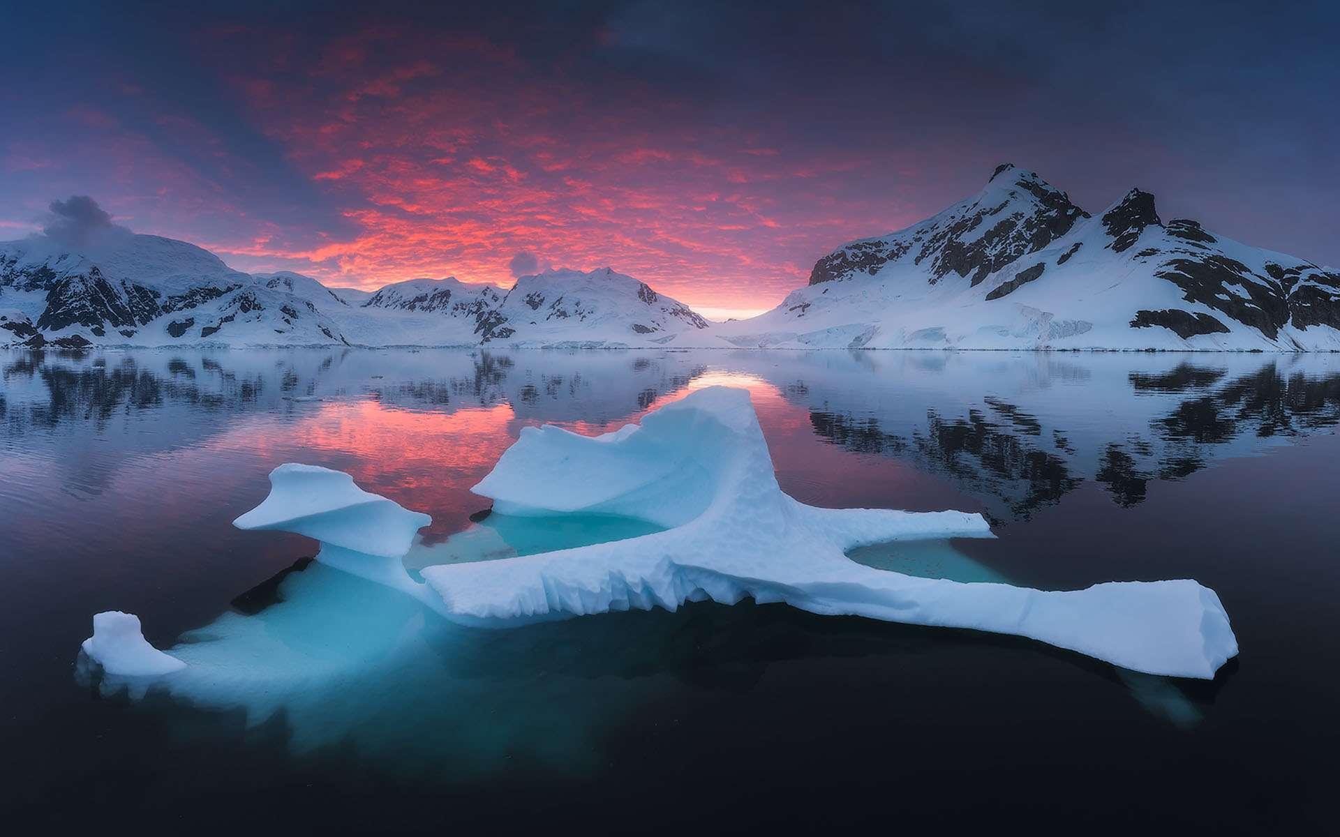 L'Antarctique, le « continent blanc », est une région magique pour le photographe qui aime jouer avec les couleurs et la lumière. Des montagnes de glace, d'énormes icebergs, une nature presque intacte. L'ensemble s'offrant sous une perspective chaque jour, chaque heure, différente. Et la possibilité aussi de saisir dans toute sa beauté, la richesse de la faune locale, des fameux manchots empereurs aux baleines bleues ou aux otaries à fourrure en passant par les léopards de mer. Un spectacle à immortaliser… avant que le réchauffement climatique ne nous en prive. © Daniel Kordan, Tous droits réservés