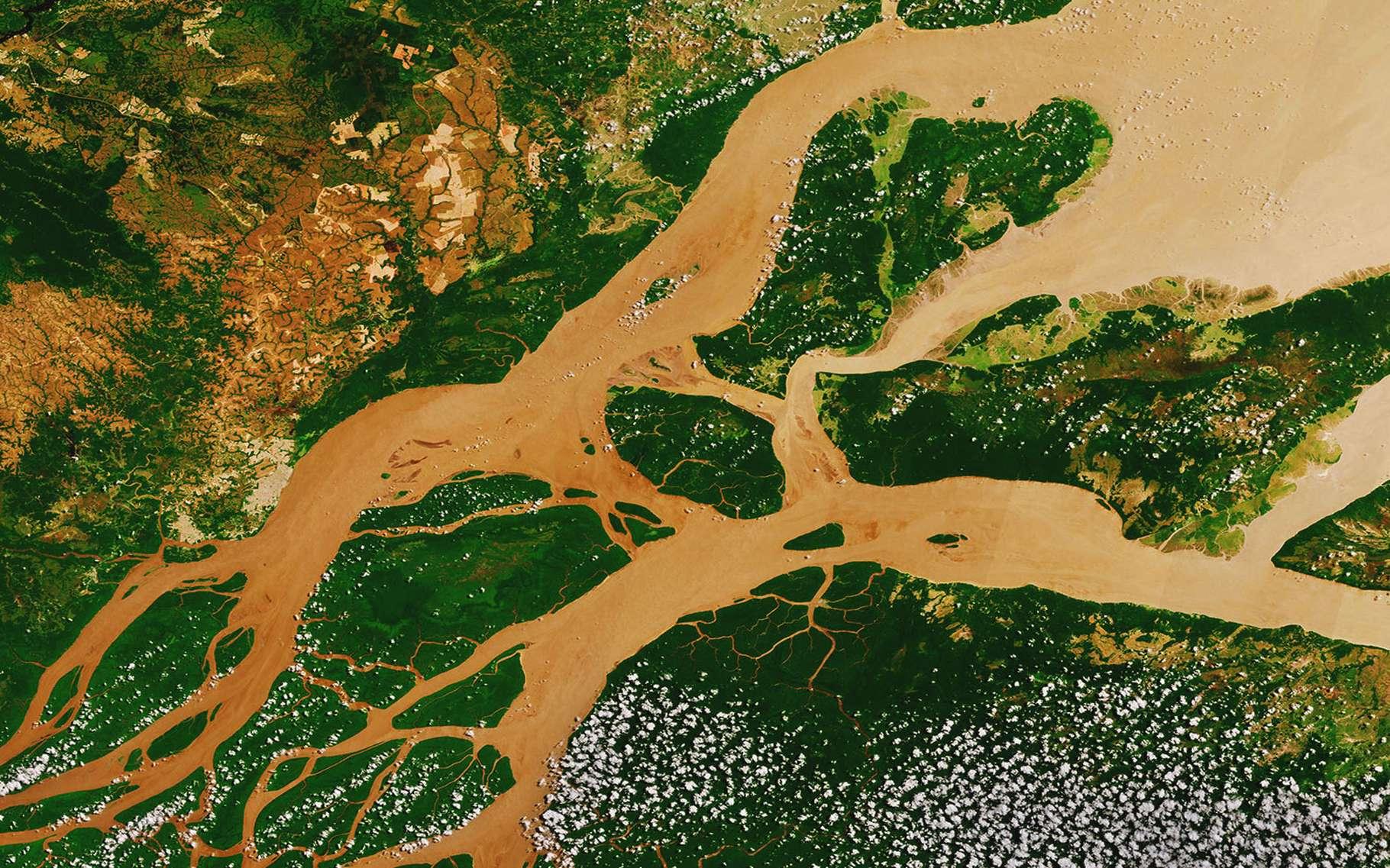 En 1889, Albert Samain écrivait « Conçu dans l'ombre aux flancs augustes de la Terre, le Fleuve prend sa vie aux sources du mystère ».Quelque deux siècles plus tard, les sources du mystère commencent à être éclaircies. Le fleuve est qualifié de corridor écologique, un milieu reliant des habitats essentiels pour une espèce ou une population. L'Amazone, fleuve le plus long du monde situé en Amérique du Sud, abrite une faune d'une grande richesse. Y nagent des milliers d'espèces de poissons, d'amphibiens, de crabes, et de tortues.© ESA, CC by-sa 3.0 IGO
