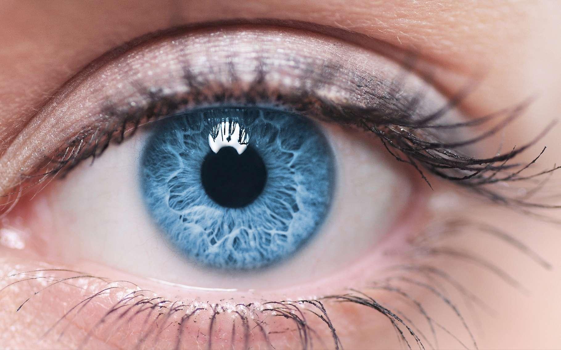 Les yeux, fragiles, doivent être protégés du soleil en été. © Piotr Krzeslak, Shutterstock