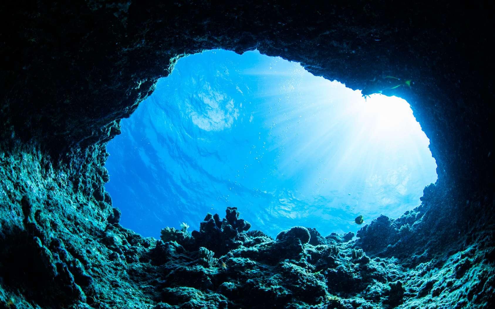La plus grande grotte sous-marine du monde a été découverte au Mexique. Ici, une grotte sous-marine. Plus de 358 systèmes sont connus dans l'État de Quintana Roo, au Mexique. © divedog, Fotolia