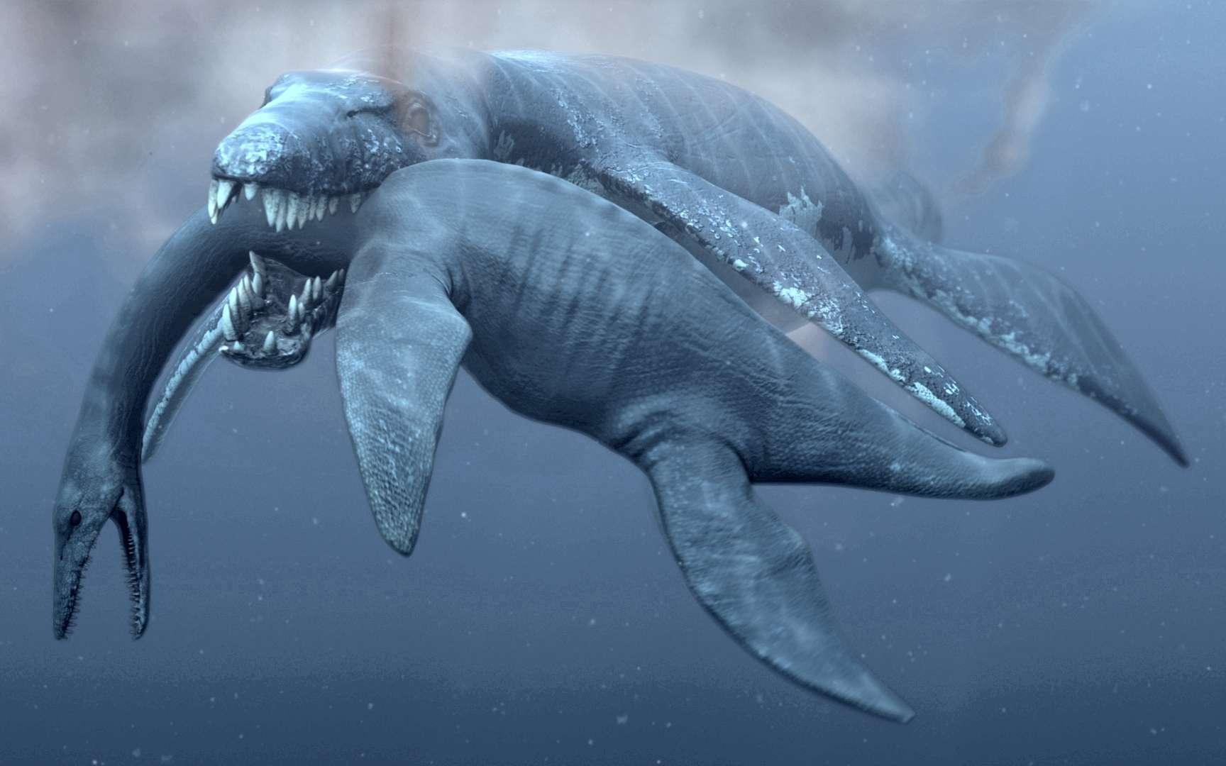 Un Predator X, alias Pliosaurus funkei, attaque un plésiosaure. Ce prédateur est un pliosaure marin du Jurassique et a sans doute disparu peu après. Mais, bien plus tard, des pliosaures plus modestes survivaient dans les eaux douces. © Natural History Museum, University of Oslo