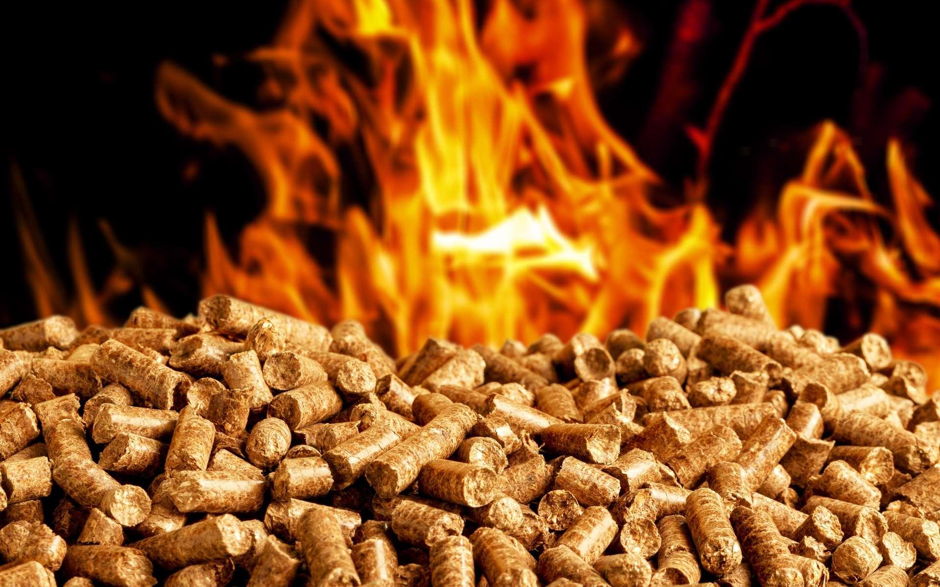 Le poêle est un appareil servant au chauffage de la maison. © BillionPhotos.com, Adobe Stock