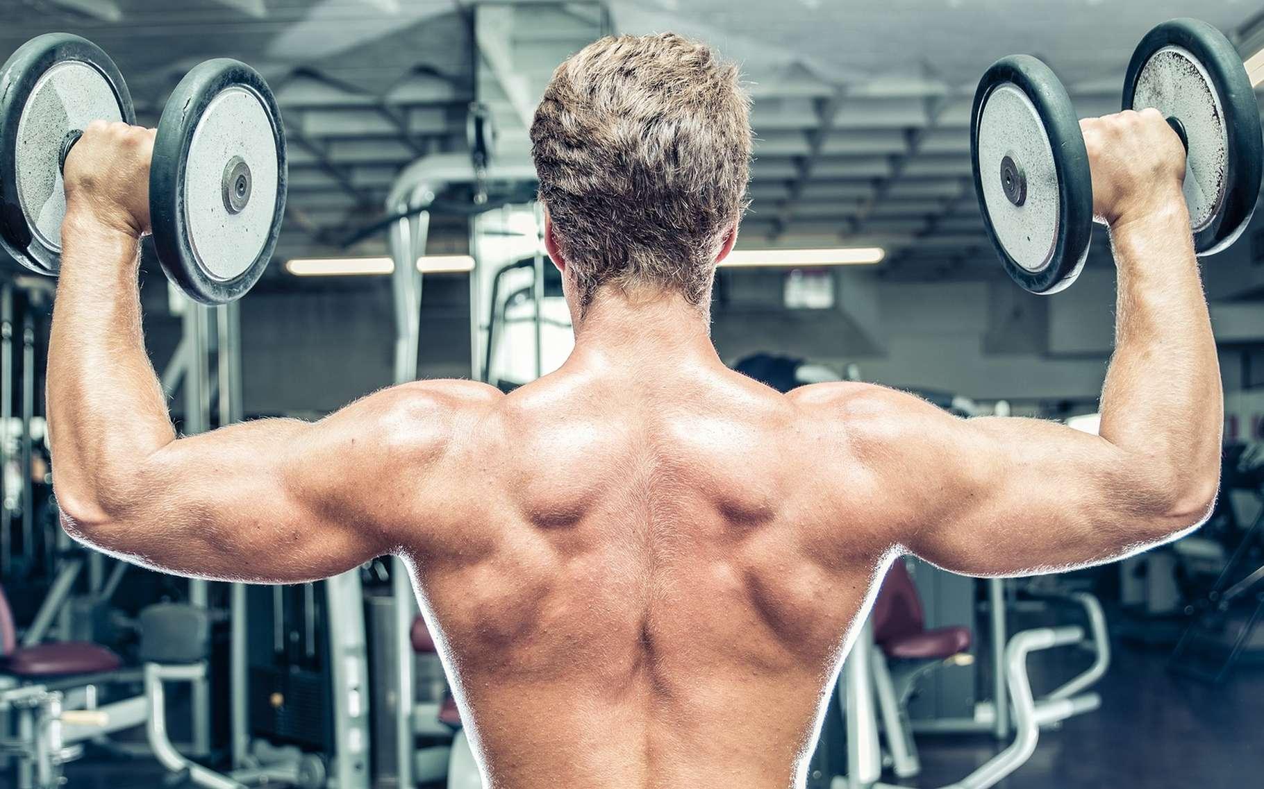 La testostérone favorise le développement musculaire chez l'homme. Elle est aussi un produit dopant et anabolisant. © oneinchpunch, Shutterstock