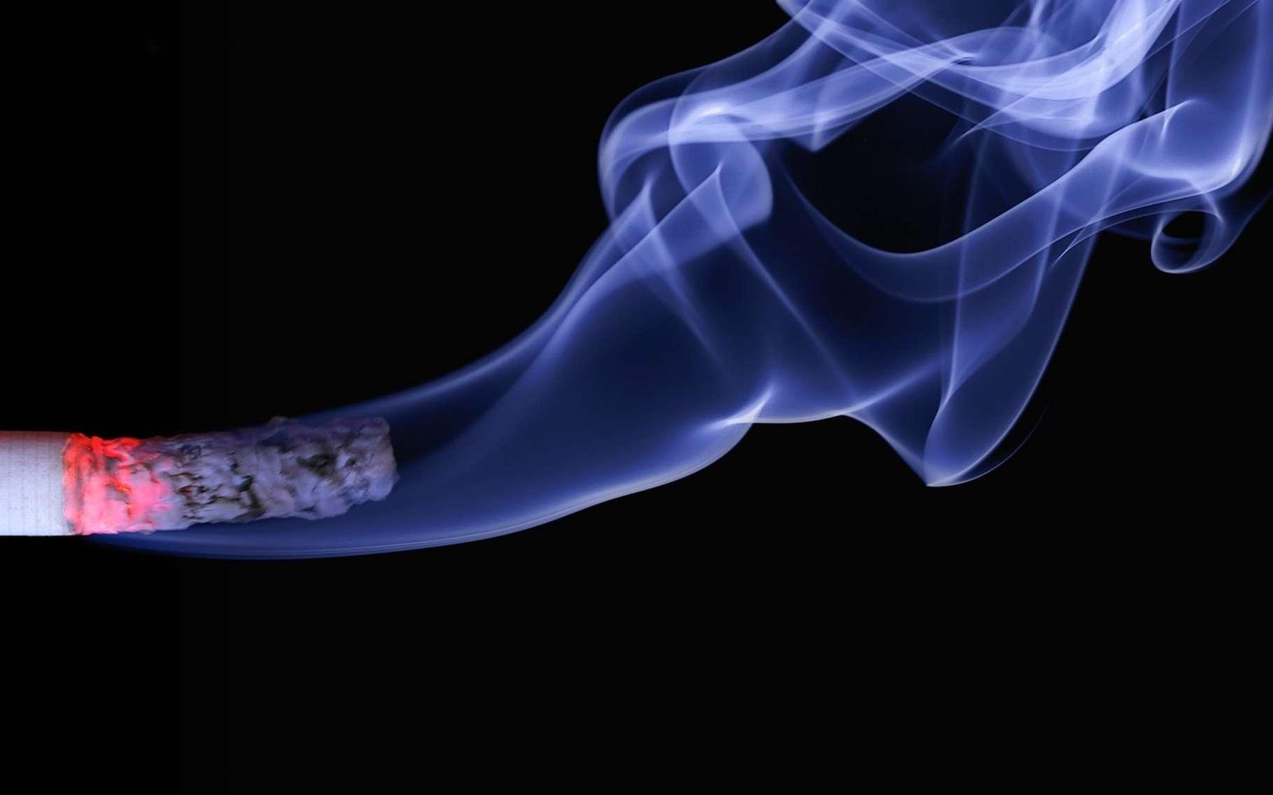 Le Centre international de recherche sur le cancer classe la fumée de cigarette parmi les substances cancérogènes avérées. Certains la qualifieraient plutôt de cancérigène… © realworkhard, Pixabay, CC0 Creative Commons