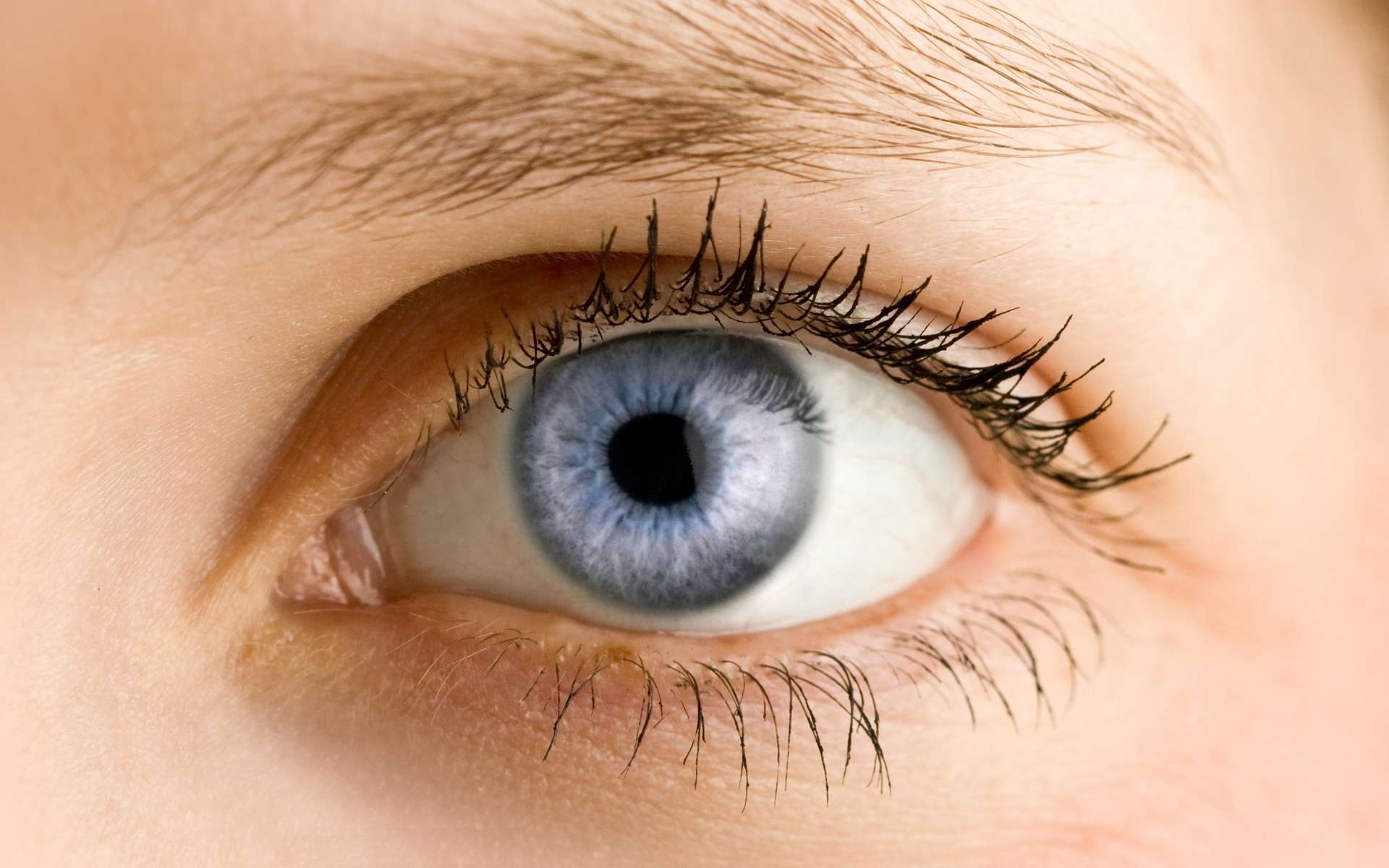 L'orthoptiste est spécialisé dans la rééducation de l'oeil et la correction de troubles oculaires. © m.arc, Adobe Stock.