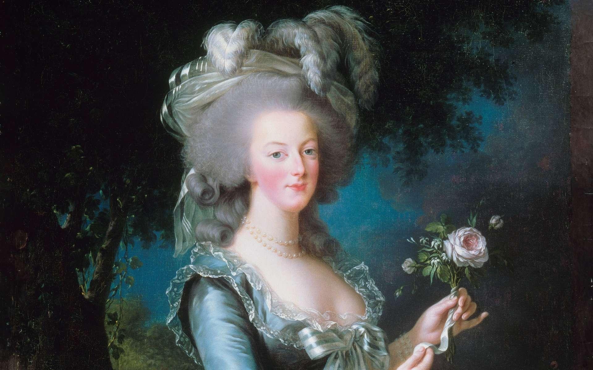 Portrait de Marie-Antoinette à la rose peint par Elisabeth Vigée Lebrun, 1783, Chateau de Versailles. © Wikimedia Commons