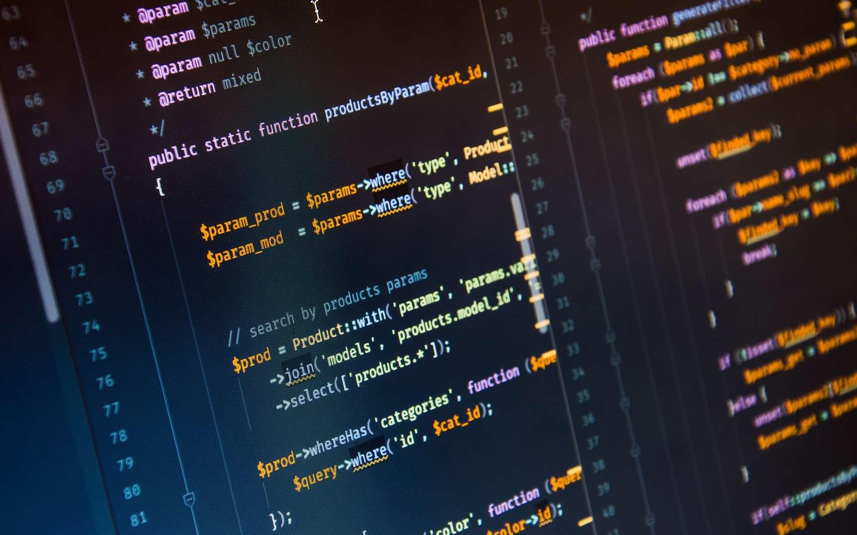 Un code Javascript peut s'exécuter dans une page web pour venir ensuite se loger dans la mémoire cache de l'ordinateur © Yurich84, Fotolia