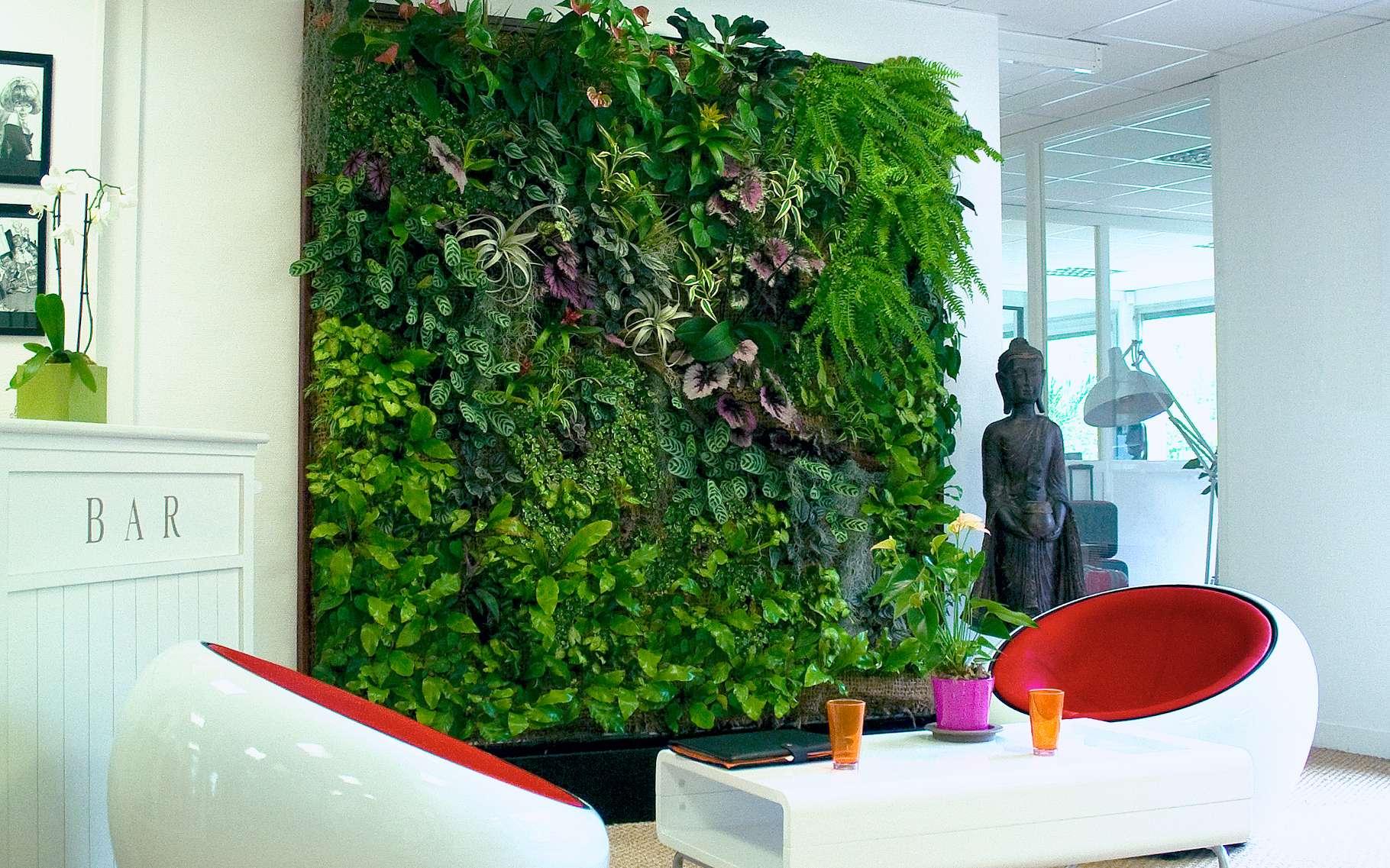 Un mur végétal intérieur permet d'assainir l'air d'une habitation. © Spaceo, Wikimedia Commons, CC by-sa 3.0