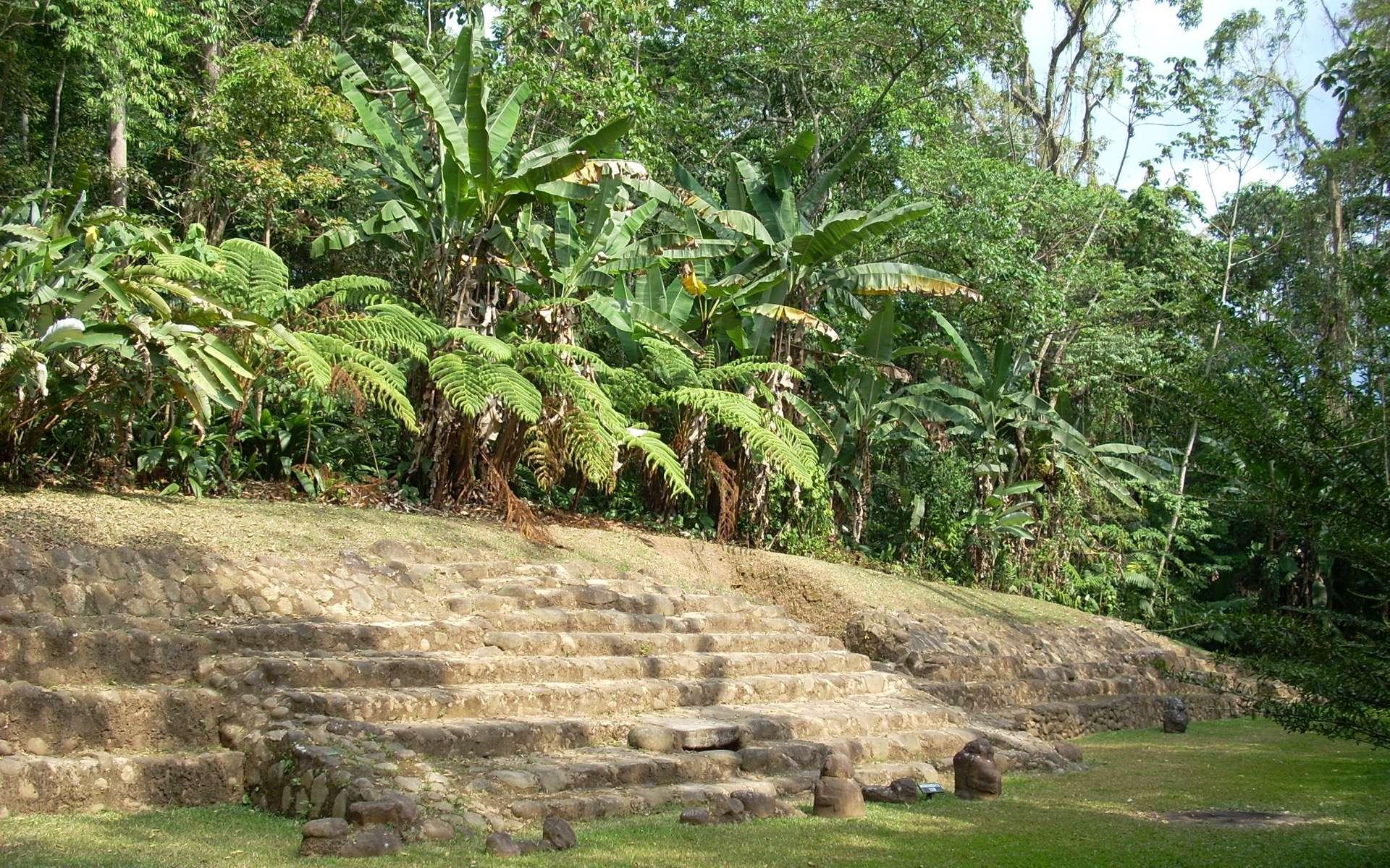 Sur le site archéologique de Takalik Abaj, au Guatemala, l'escalier d'accès à la terrasse 3. © Simon Burchell, Wikimedia Commons, CC by-sa 3.0