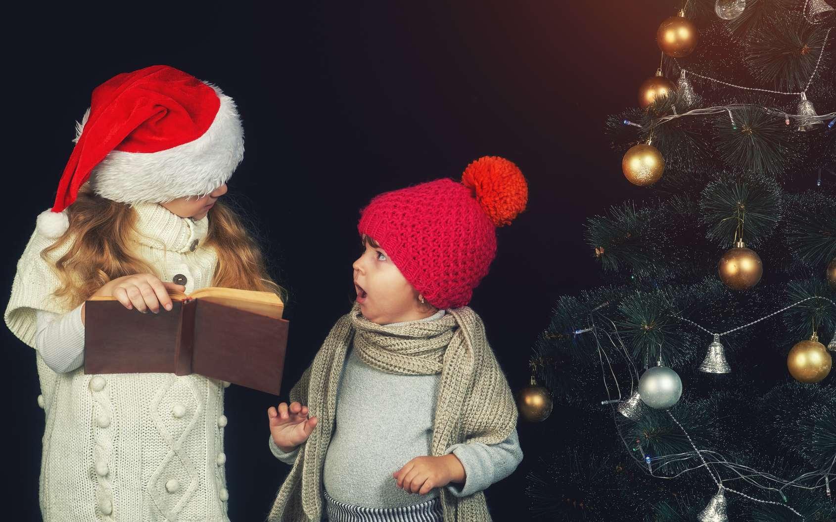 De beaux livres pour Noël. © fisher05, Fotolia