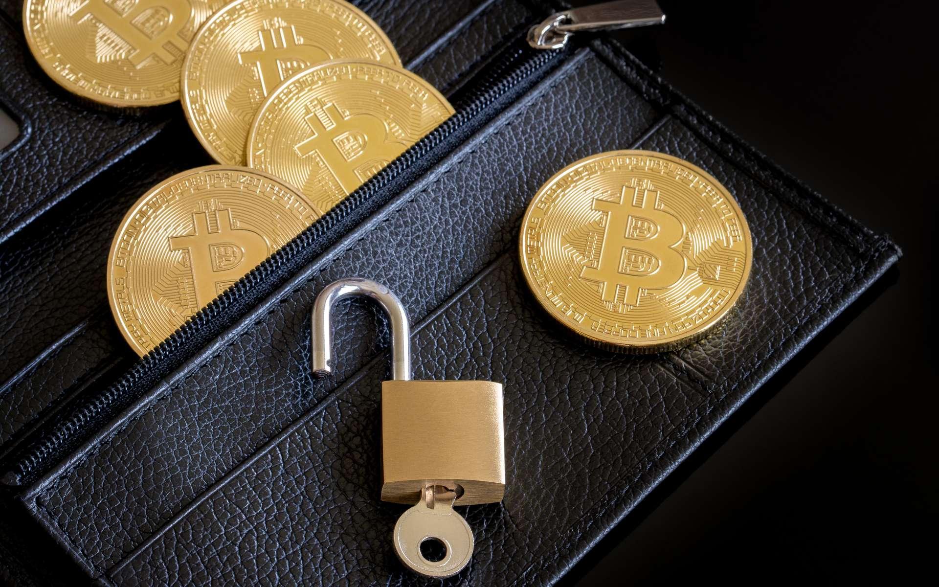 Les cryptomonnaies peuvent être source d'inquiétude pour leurs nombreux détenteurs © Léna Constantin, Adobe Stock