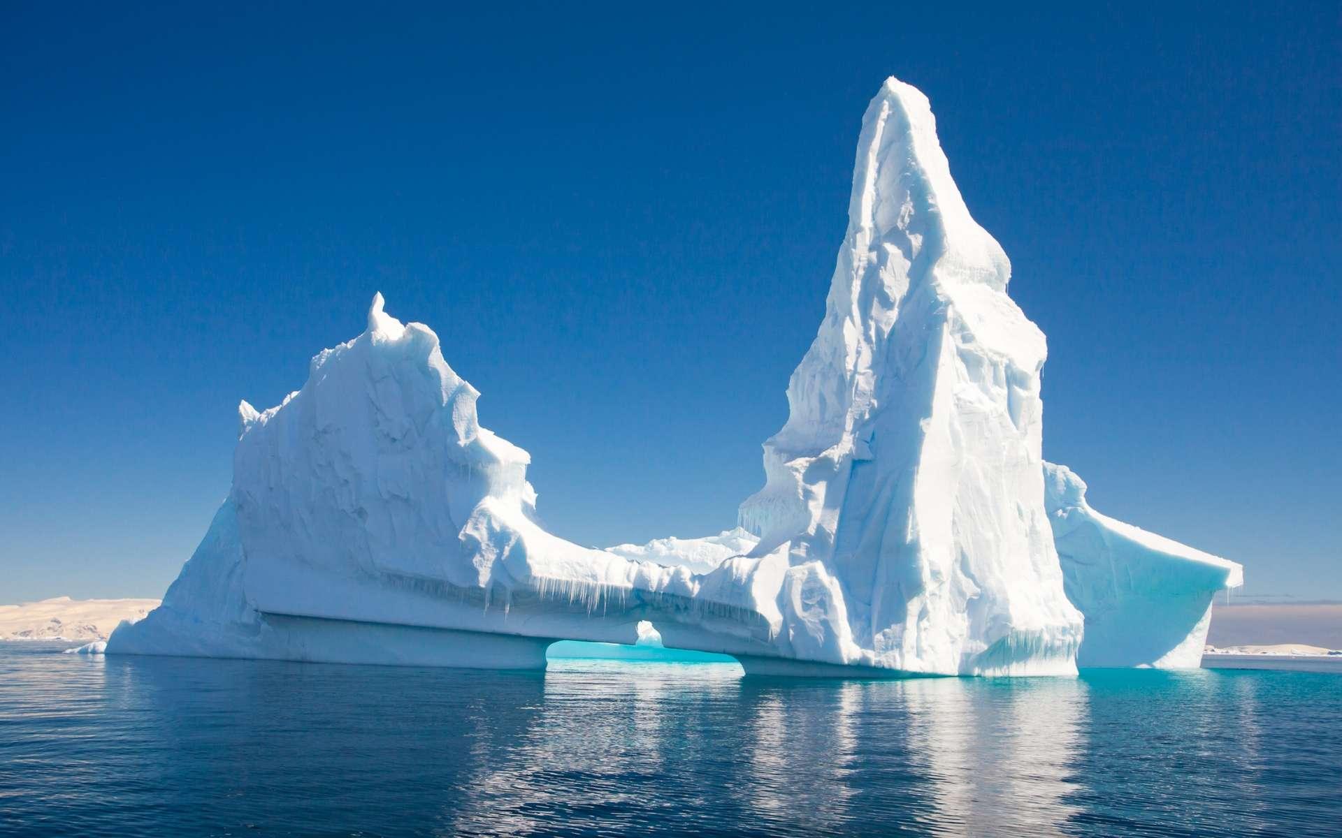 En stimulant la production de phytoplancton autour d'eux grâce aux sels minéraux et autres nutriments relâchés dans leurs eaux de fonte, les plus grands icebergs se comportent comme des puits de carbone ambulants. © Juancat, Shutterstock