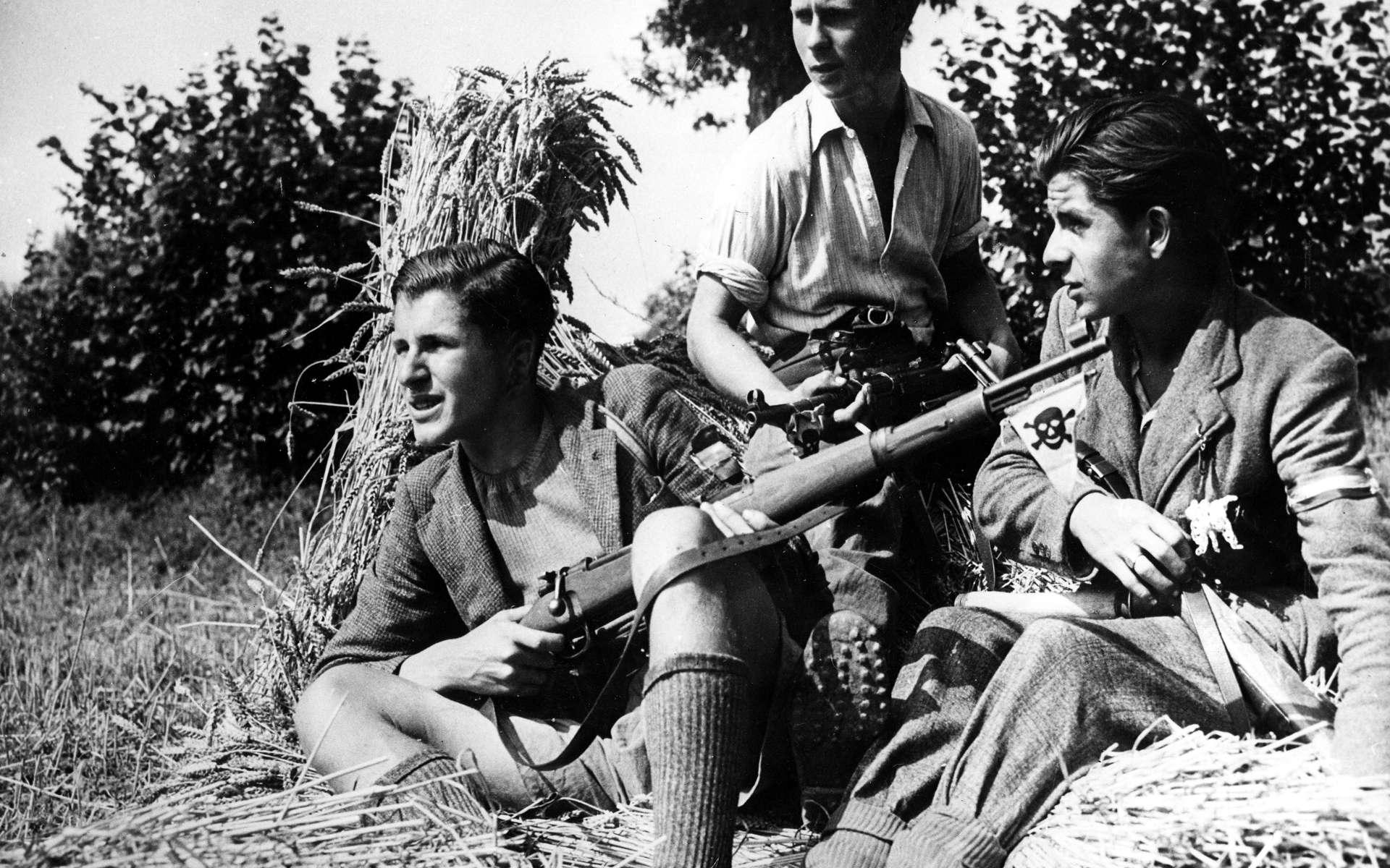 Maquisards bretons dans la résistance durant la seconde guerre mondiale. © Service historique de la défense