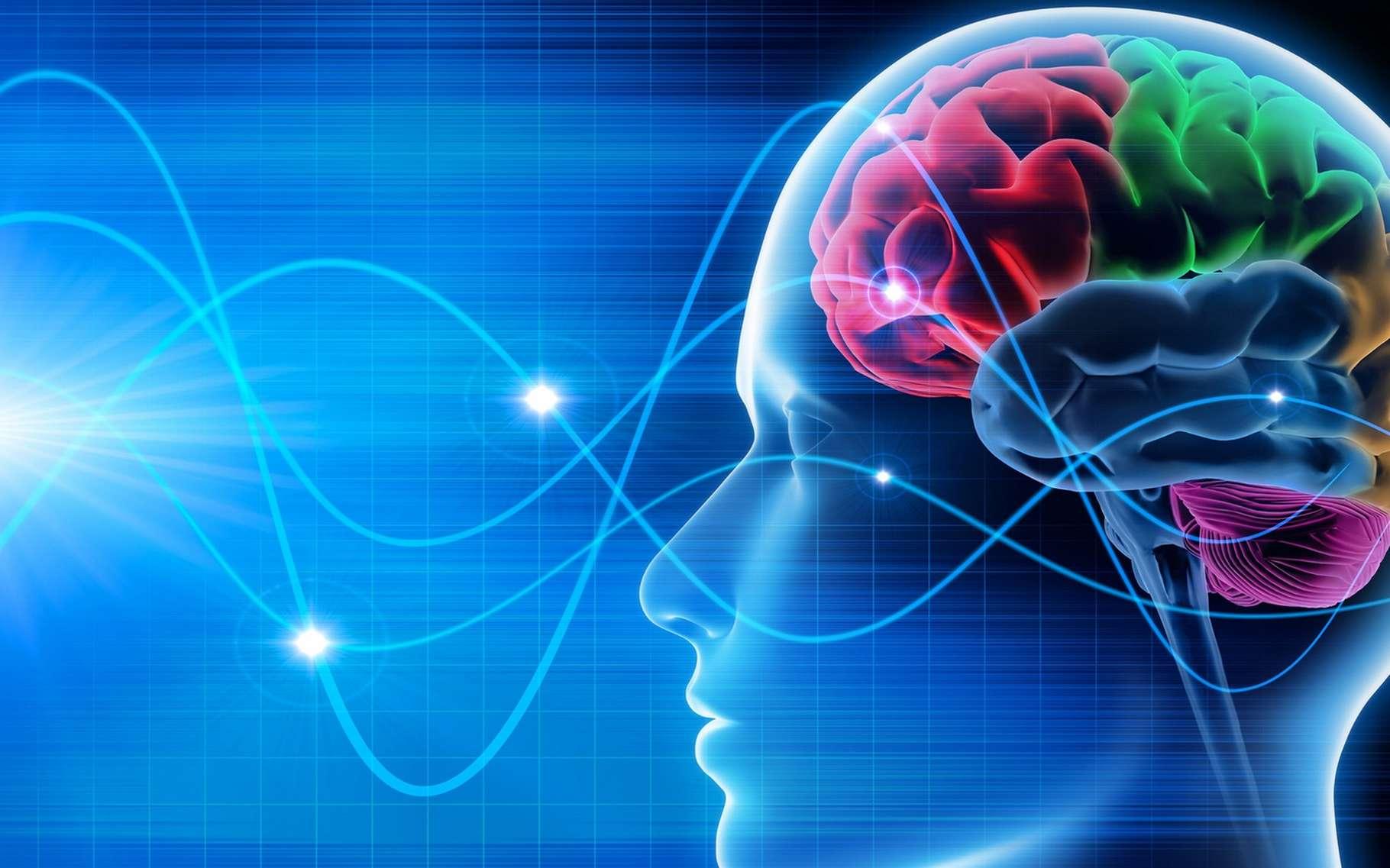 Les travaux des chercheurs du MIT et de l'université de Boston ouvrent la voie à la création d'interfaces neuronales directes qui permettront à l'Homme d'interagir de manière plus intuitive avec les robots. © Psdesign1, Fotolia