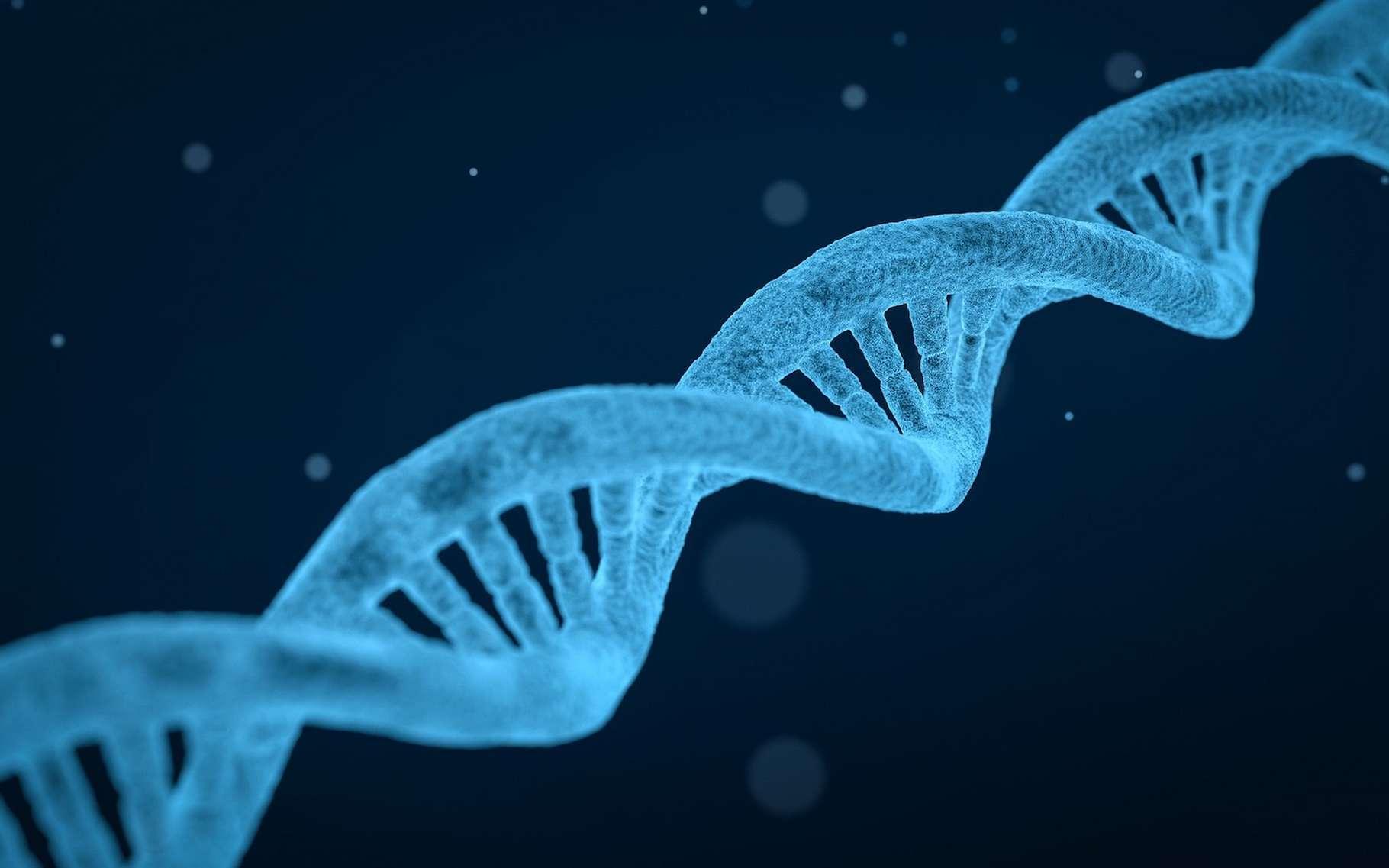 Une étude montre qu'avoir connaissance des résultats d'un test génétique peut influer non seulement sur notre volonté, mais directement sur notre physiologie. © qimono, Pixabay, CC0 Creative Commons
