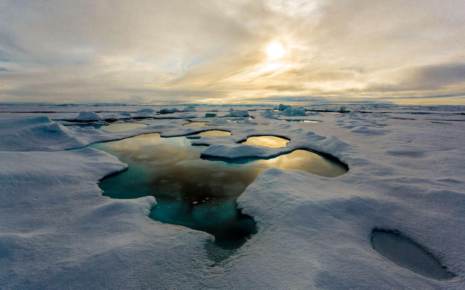 Les étendues d'eau sur la banquise, plus fine et jeune, accélèrent la fonte de la glace. L'eau fait chuter l'albédo de la banquise et transmet plus de 11 % du rayonnement incident à l'océan. © Stefan Hendricks, Alfred Wegener Institute