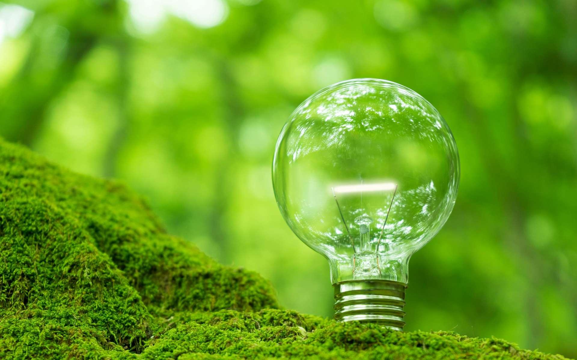 Leader dans les énergies bas carbone, EDF est convaincu que la collaboration avec les start-up fera émerger les solutions et les services innovants indispensables pour atteindre la neutralité carbone. © NOBU